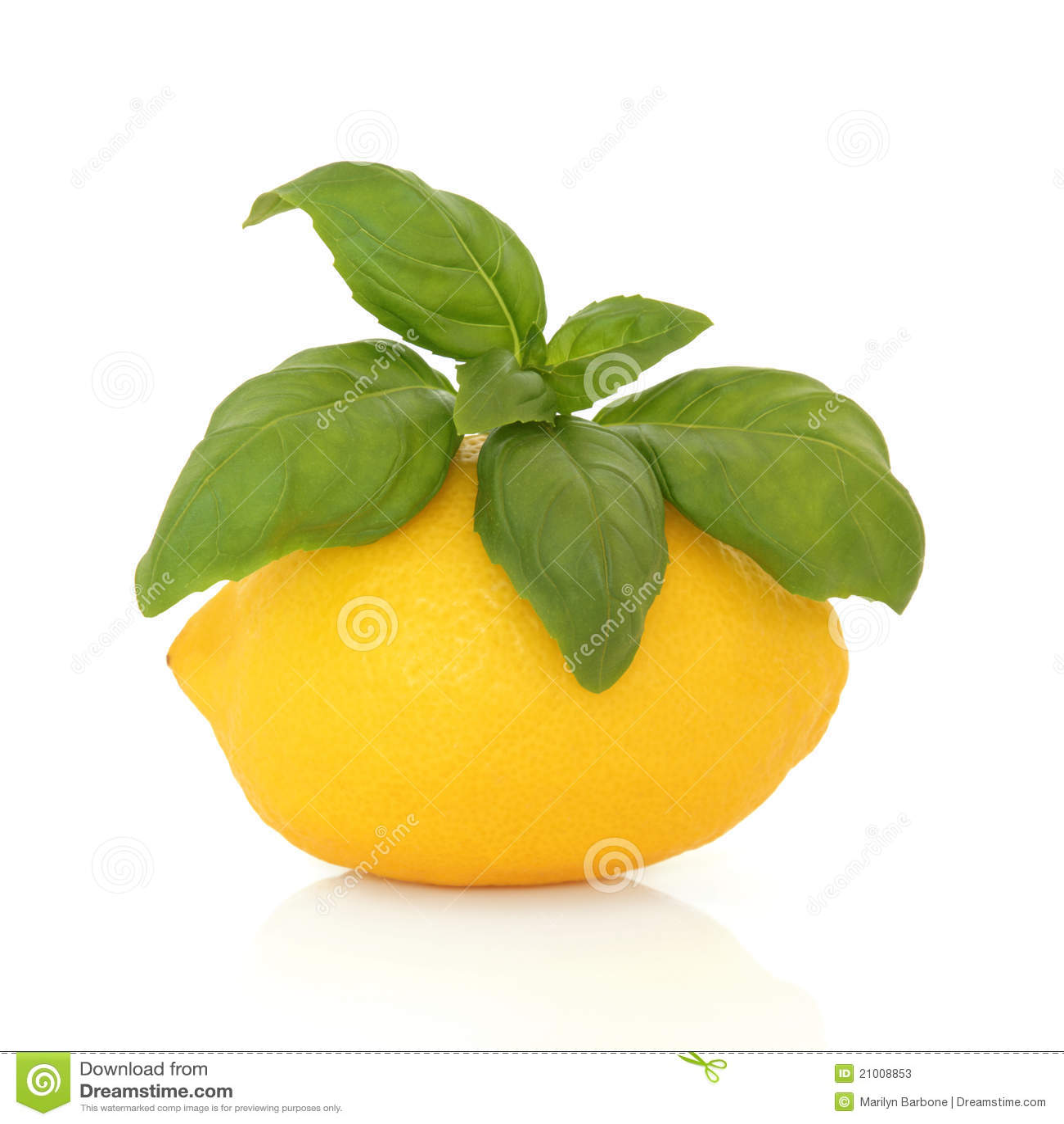 Limone e basilico
