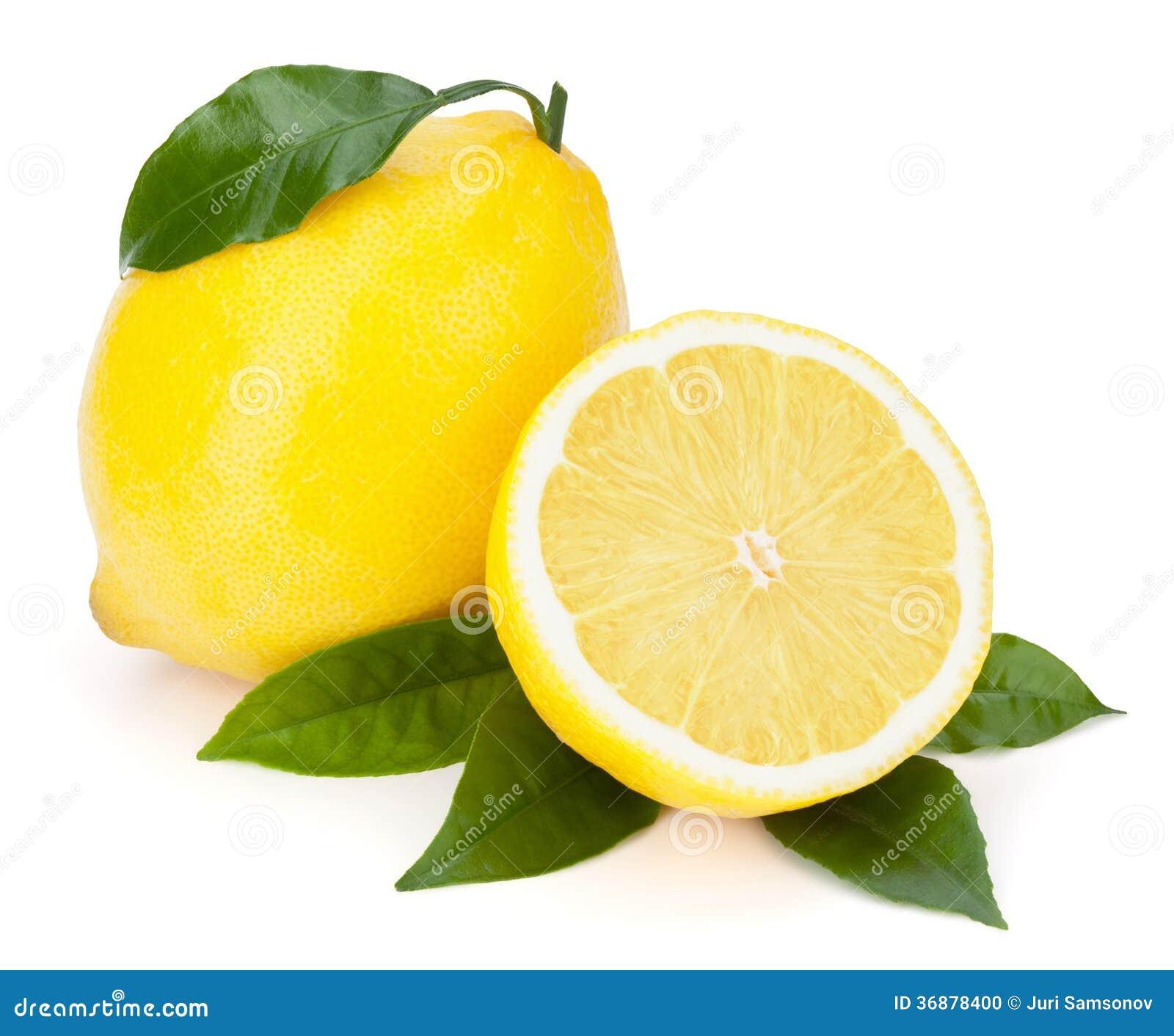 Download Limoni Freschi Con Le Foglie. Fotografia Stock - Immagine di limone, colore: 36878400