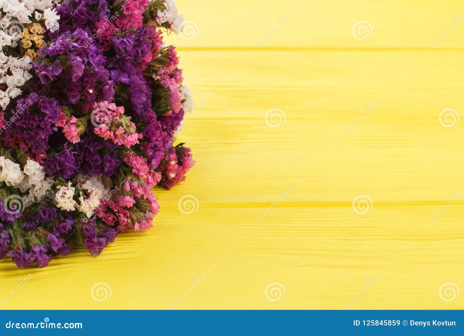 Limonium statice flowers on yellow wood background stock image limonium statice flowers on yellow wood background mightylinksfo