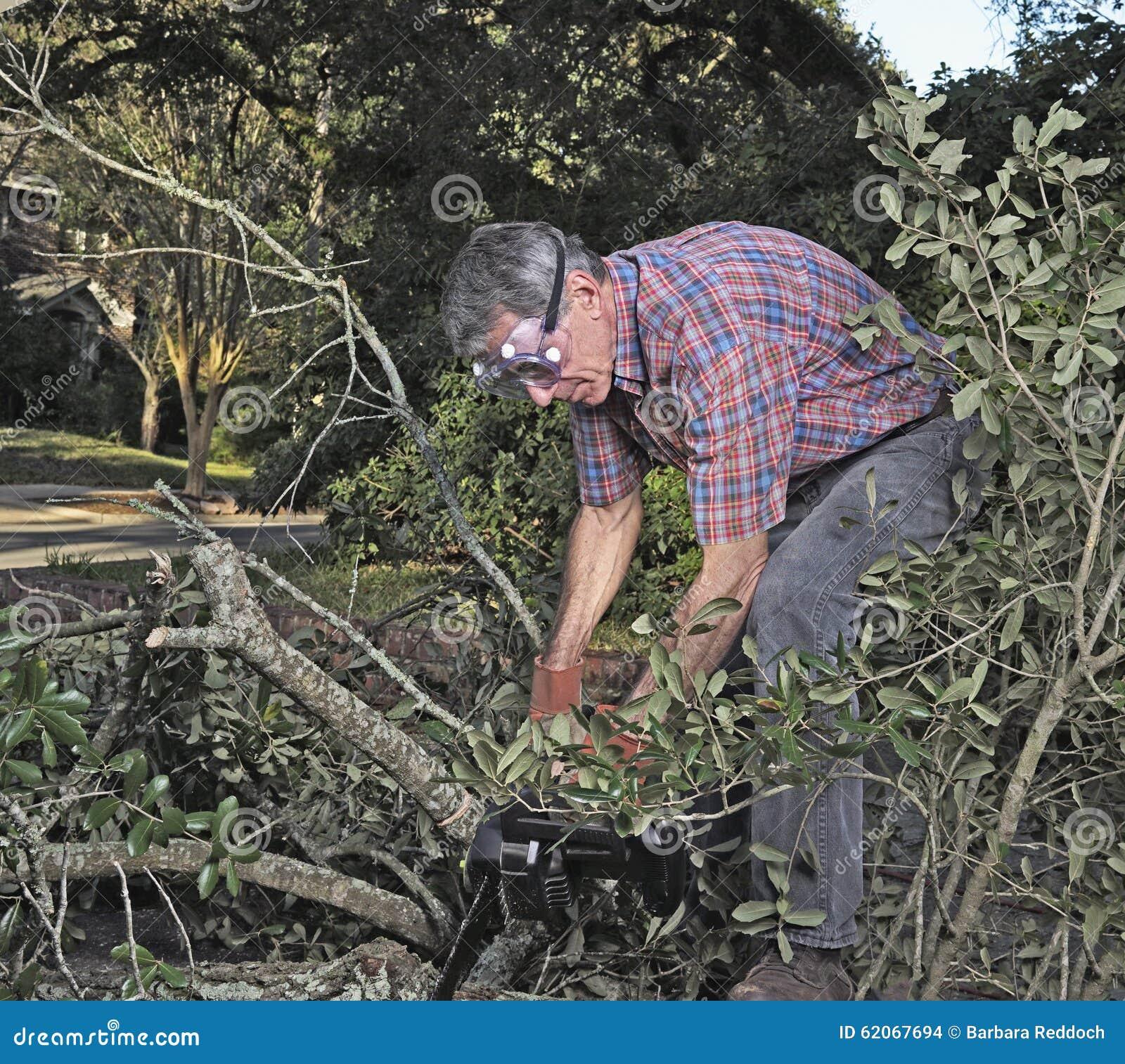 Limpando a jarda após uma tempestade