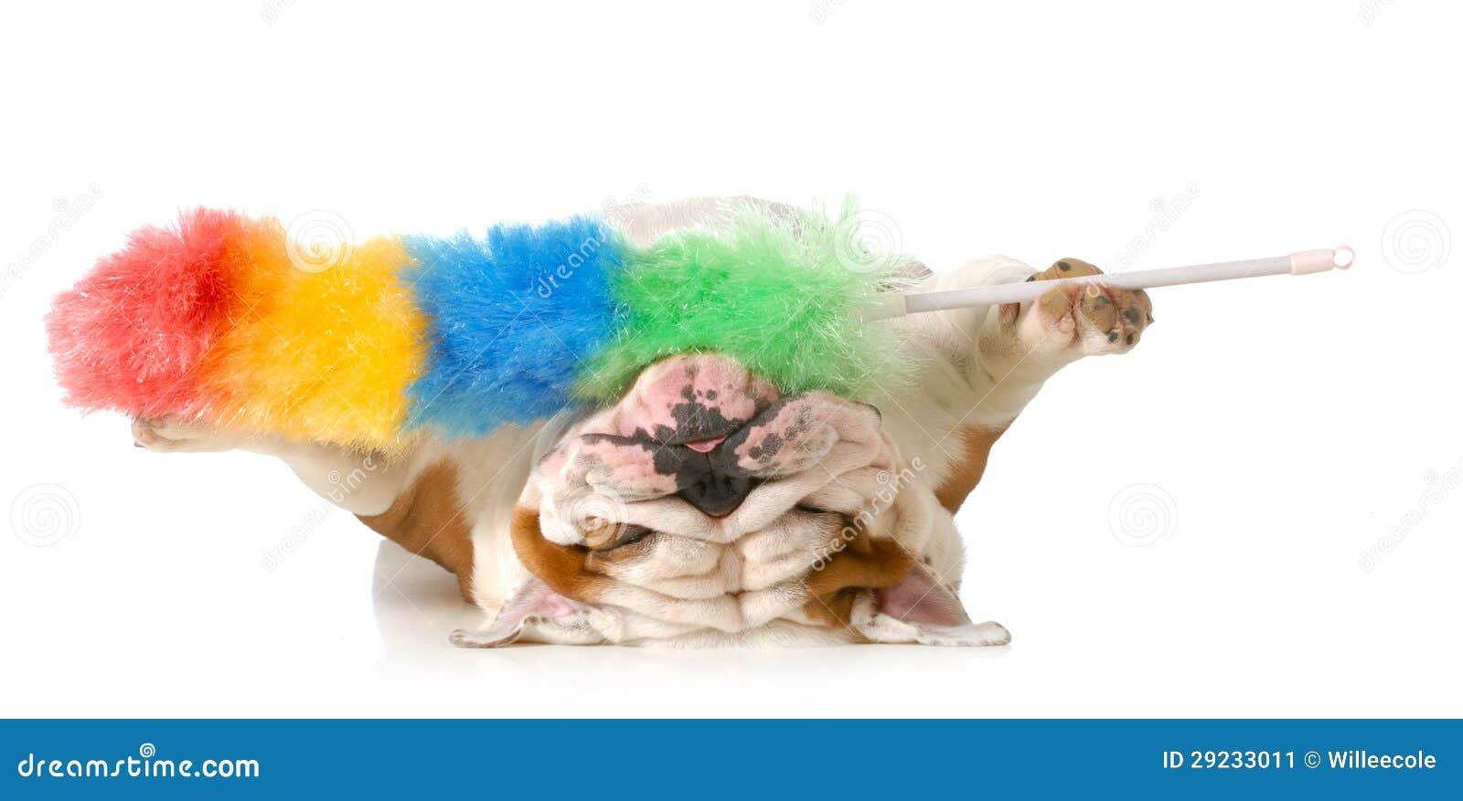 Download Limpando o cabelo de cão imagem de stock. Imagem de comical - 29233011