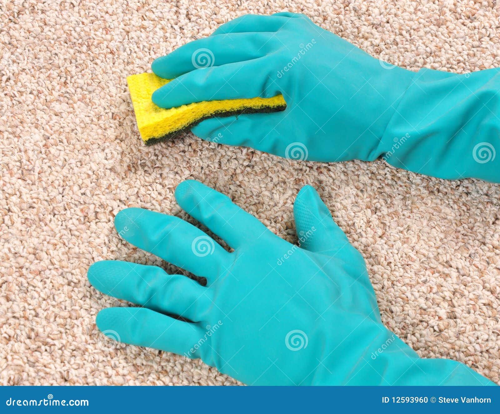 Limpieza de la alfombra foto de archivo imagen 12593960 - Limpieza casera de alfombras ...