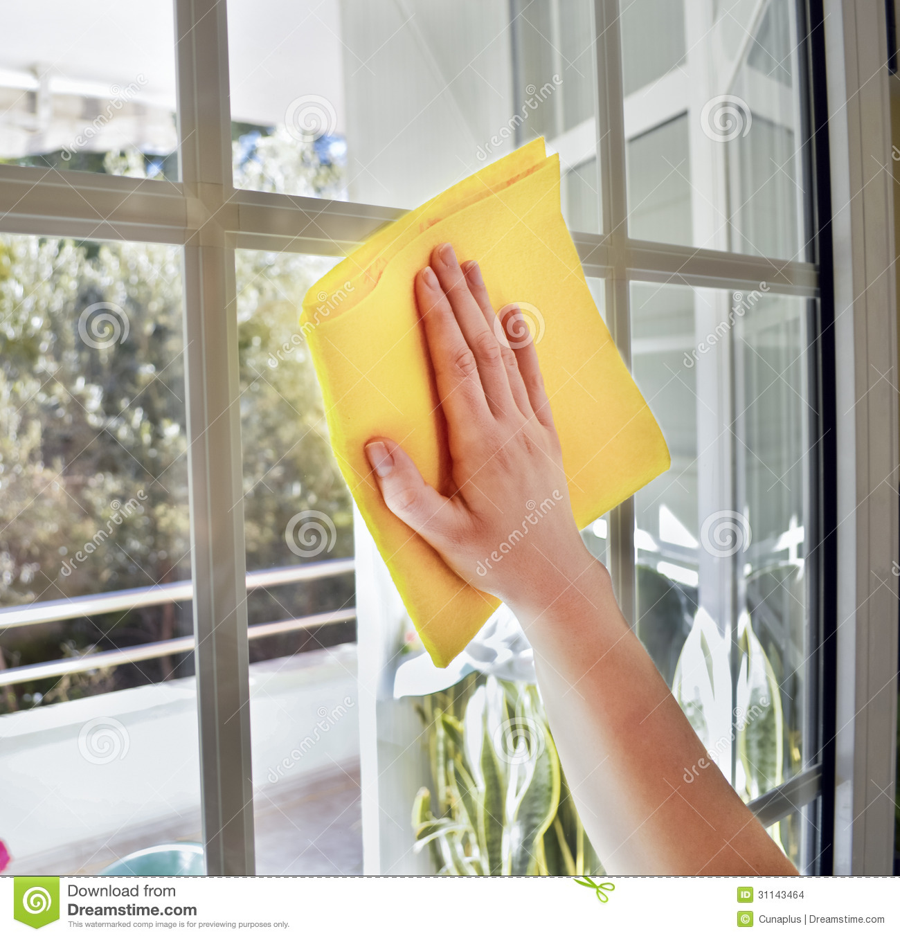 Limpiar Baño Amarillo:Window Cleaning Cloths