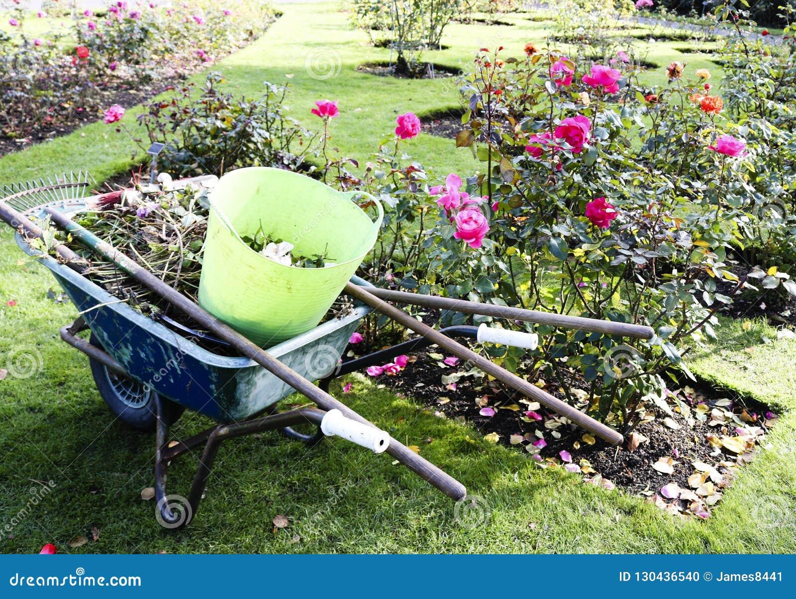 Limpieza estacional de la hoja del jardín del otoño