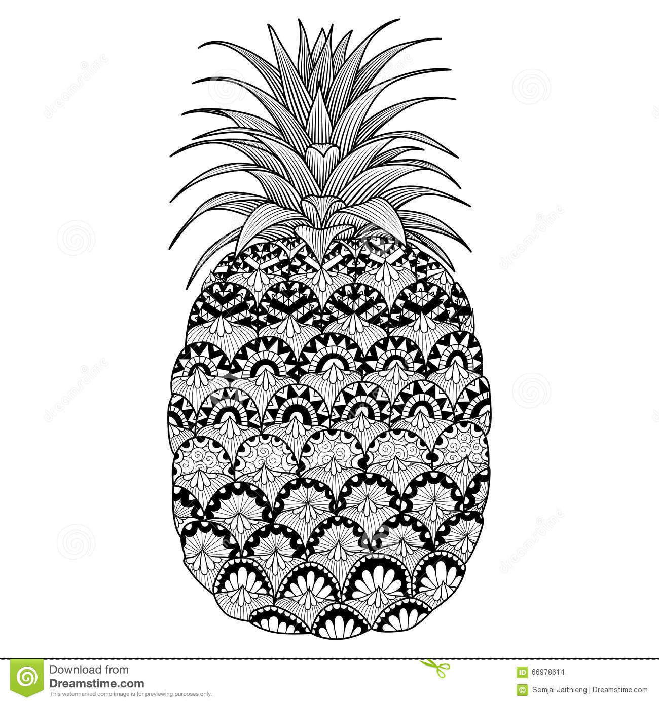 Colour Line Art Design : Line art design of pineapple for coloring book adult