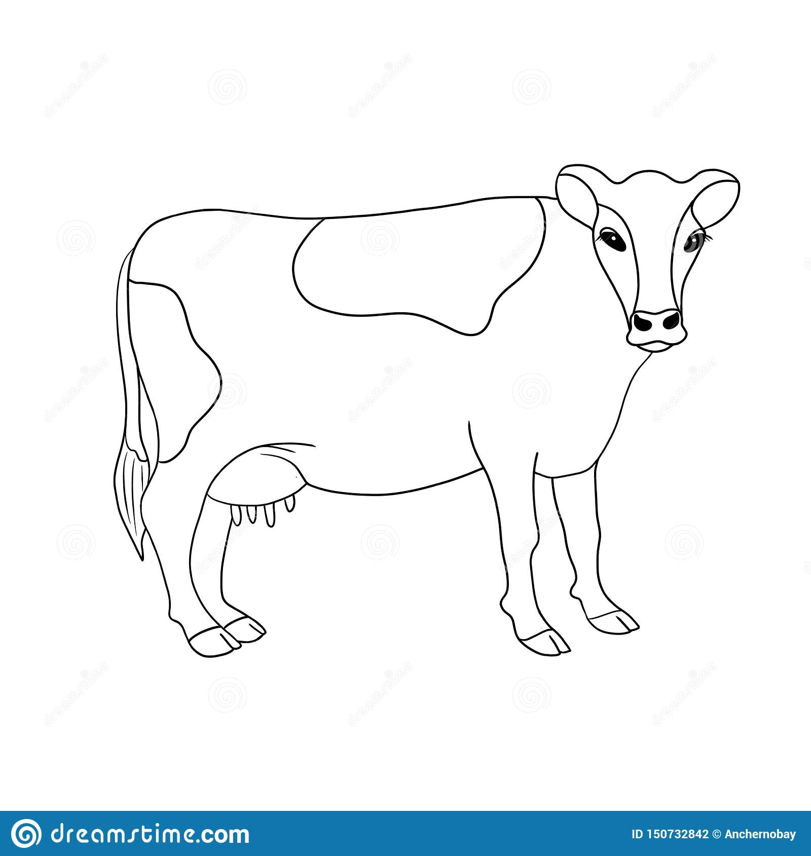 Line art farm animal cow hand drawn illustration isolated on white background