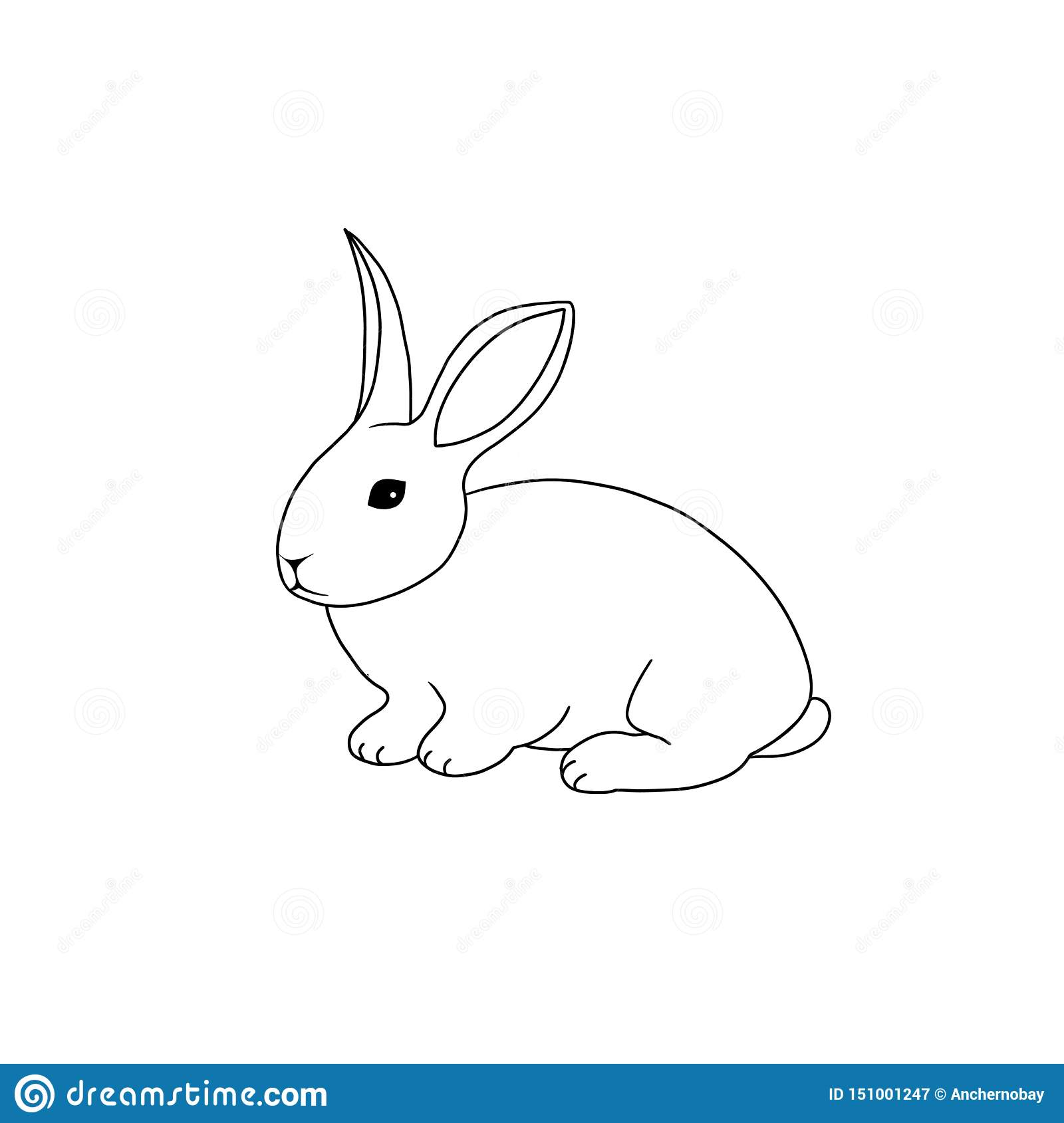 Line art farm animal rabbit hand drawn illustration isolated on white background