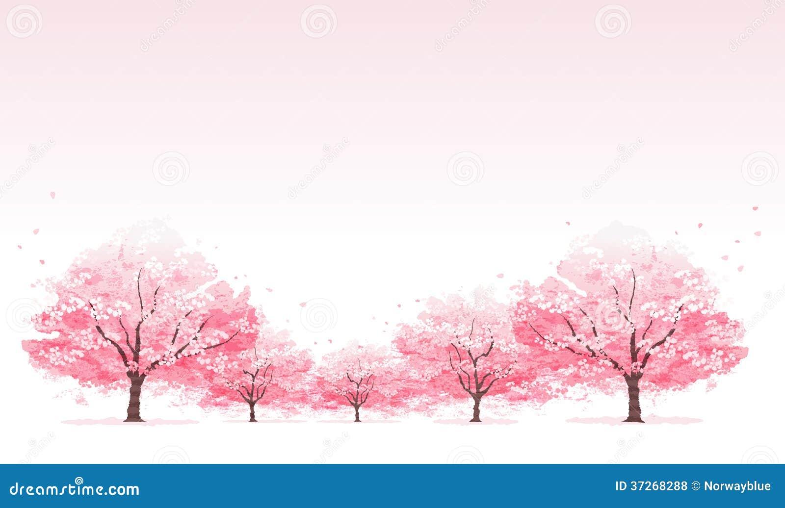 Line Of Cherry Blossom Tree Background Stock Illustration