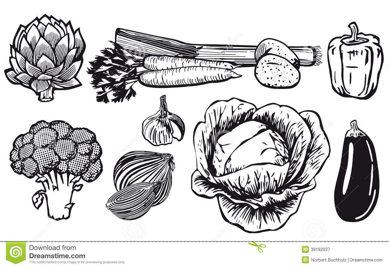 Line Art Vegetables : Line drawing of assorted vegetables stock vector
