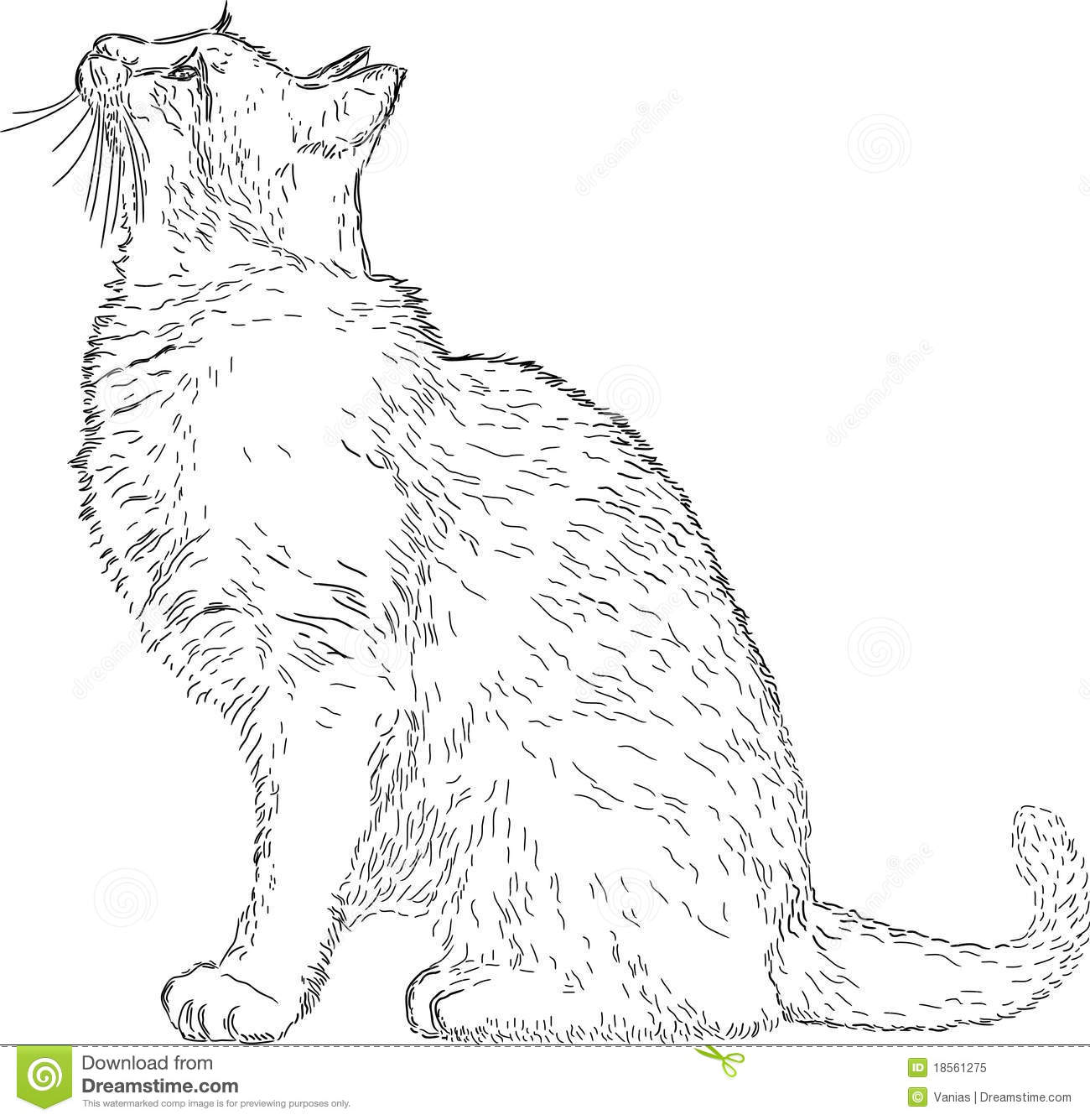 Line Art Royalty Free : Line drawing cat stock vector illustration of decoration