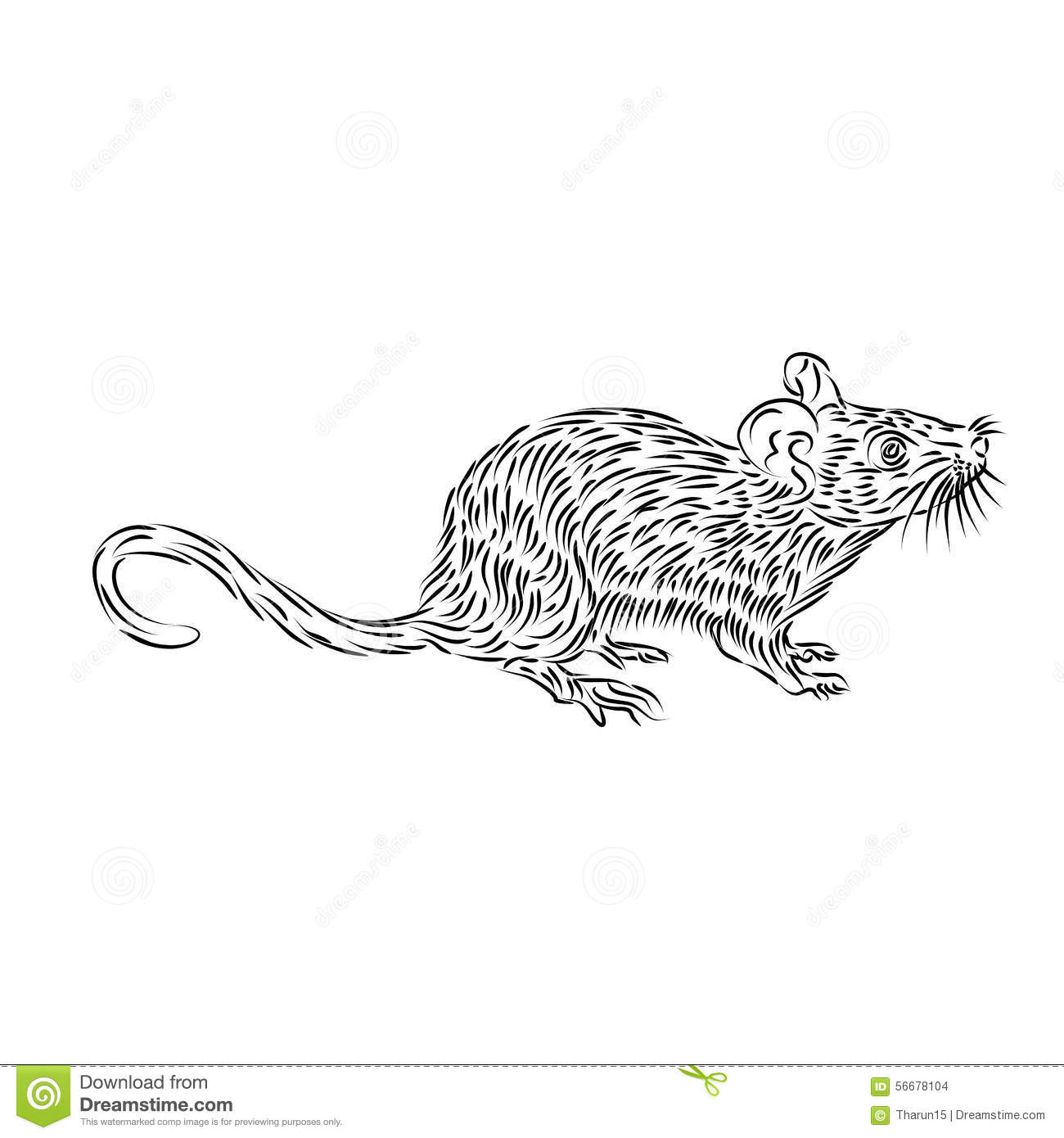 Line Drawing Mouse : Line drawing of a house mouse stock illustration
