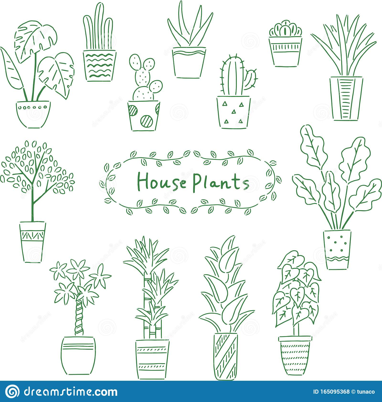 Line Drawing House Plant Set Stock Vector Illustration Of Cute Plant 165095368