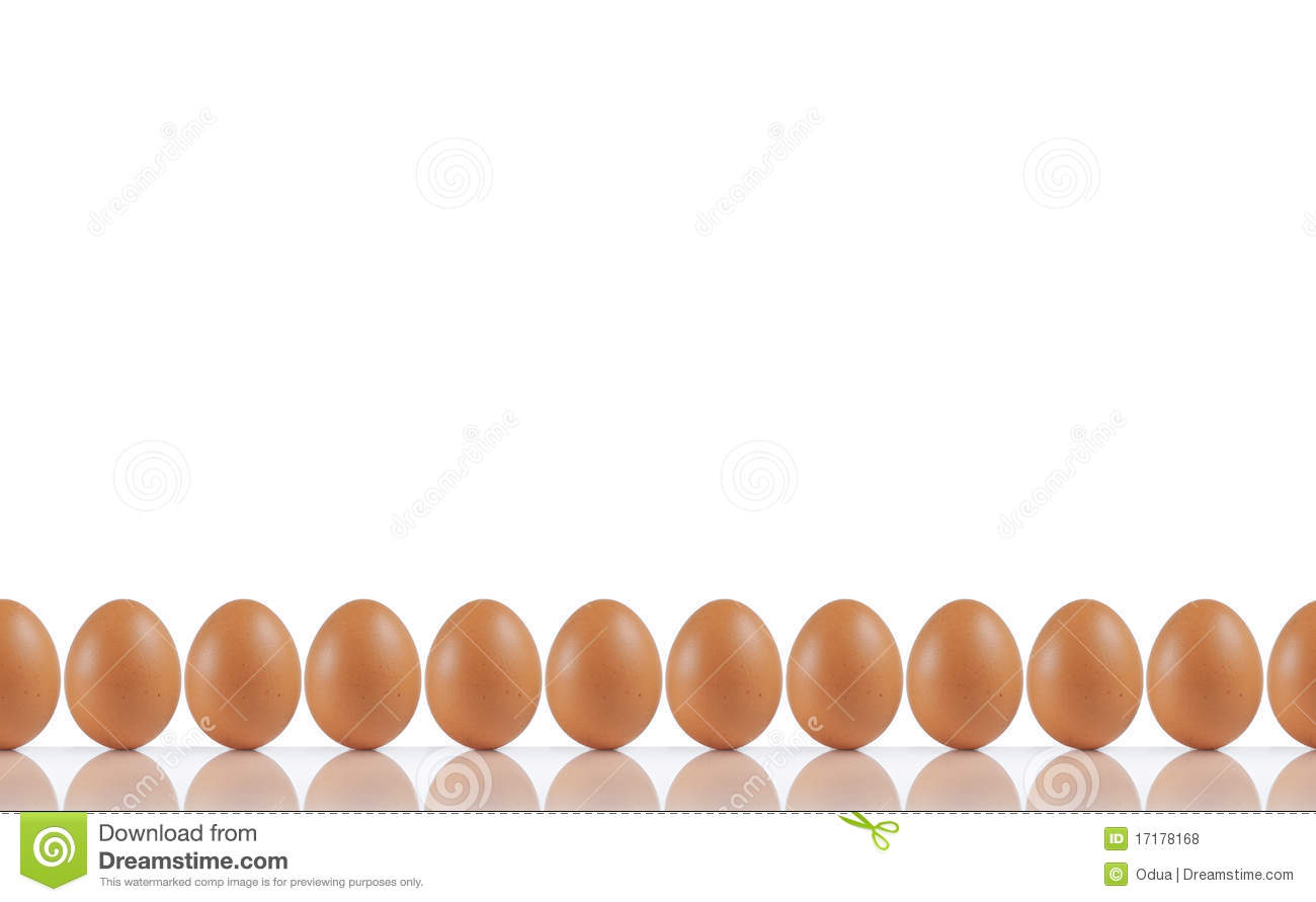 line of eggs stock photo image of nutritious natural