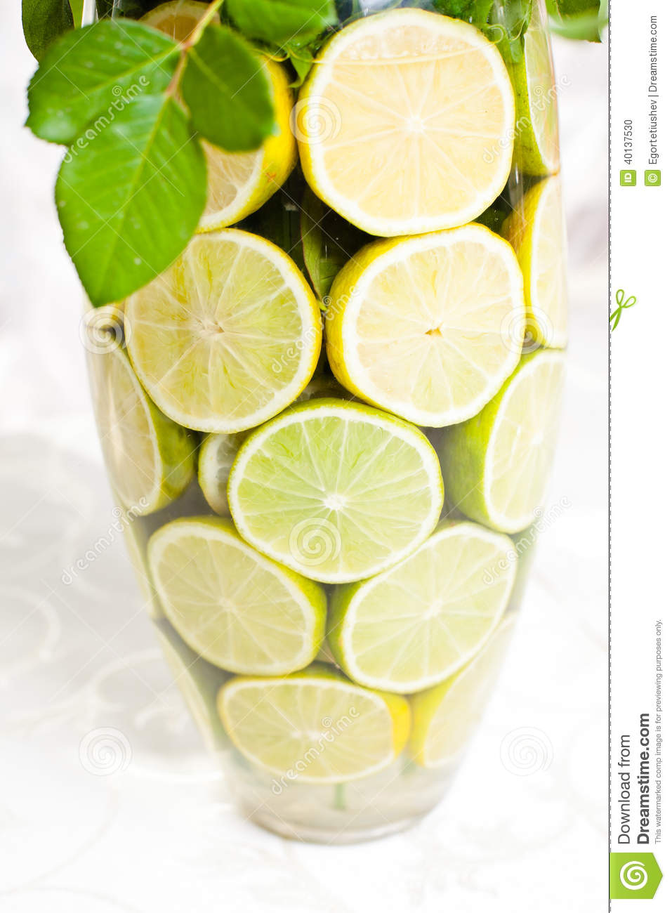 Line Glass Vase With Slices Of Lemons Stock Illustration