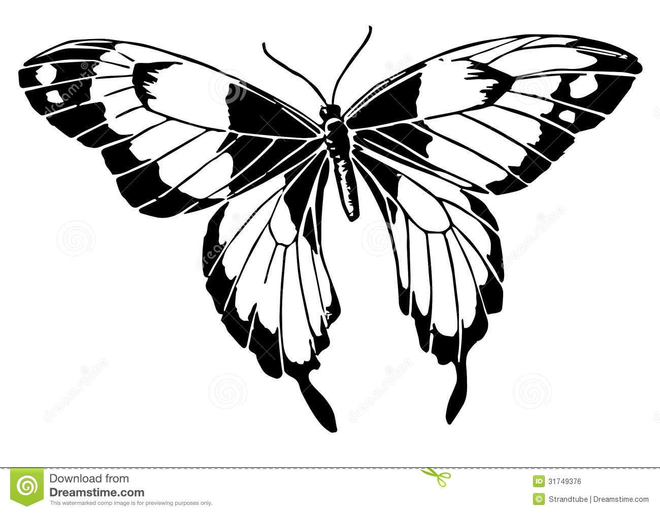 Line Art Design Illustration : Line illustration of a butterfly eps stock vector