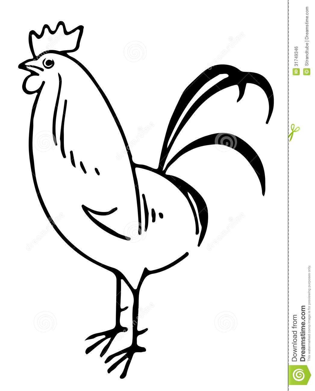 Line Drawing Rooster : Line illustration of a rooster eps stock vector image