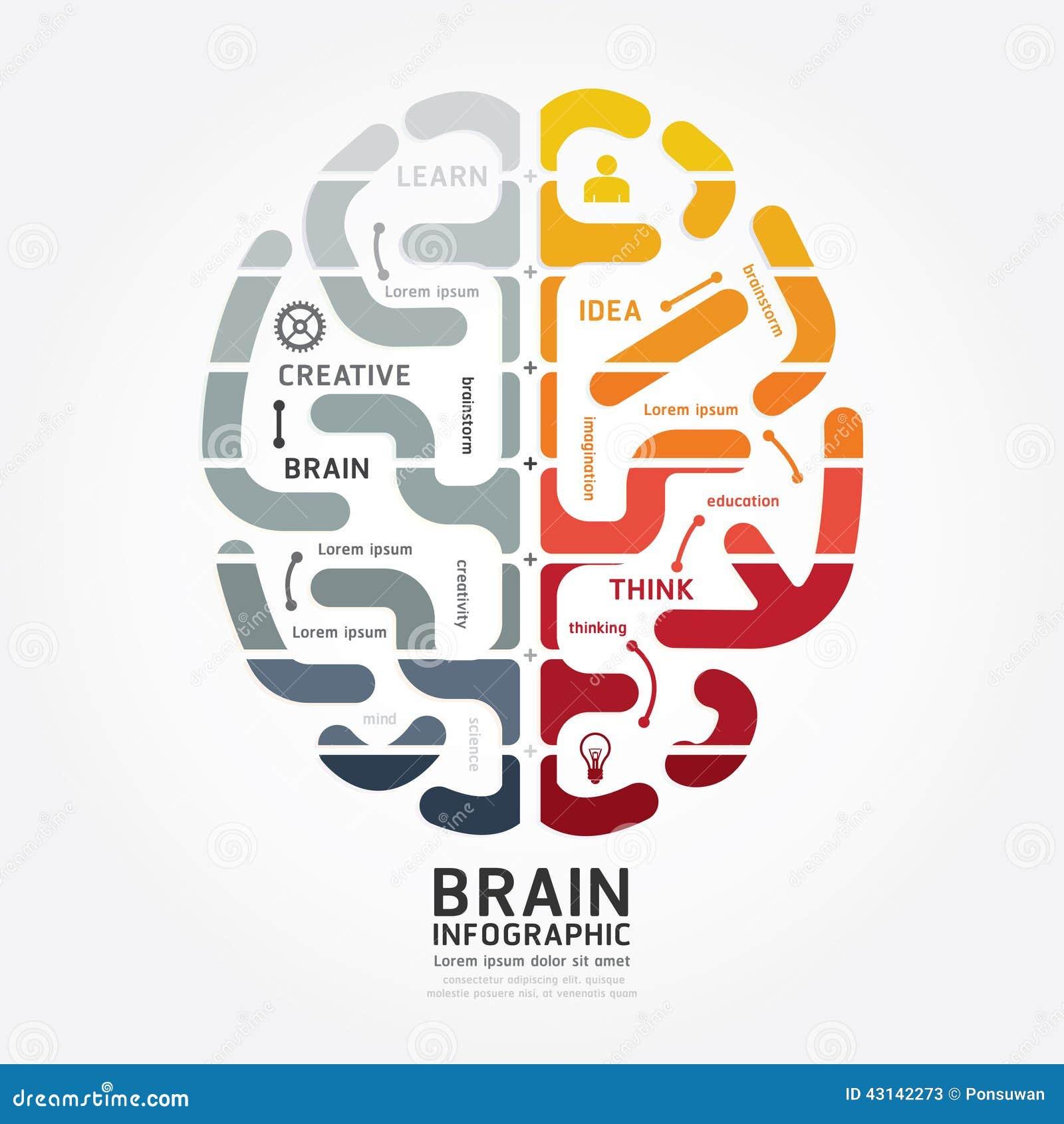 Linea colore del diagramma di progettazione del cervello di vettore di Infographics di monocromio