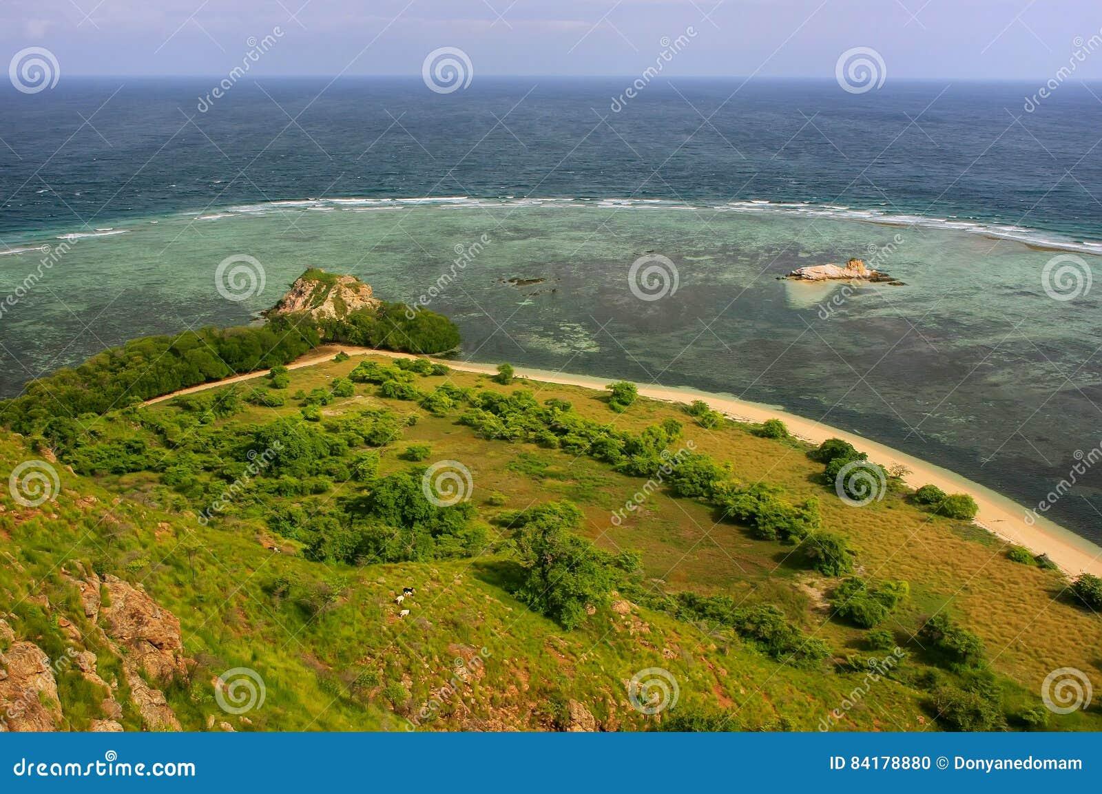 Linea costiera dell isola di Kanawa nel mare del Flores, Nusa Tenggara, Indones