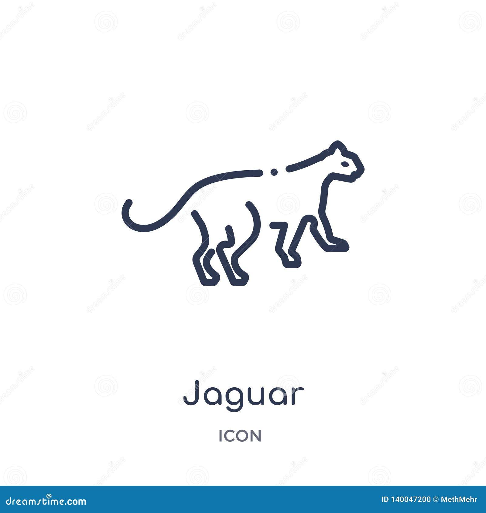 Lineair jaguarpictogram van Dieren en de inzameling van het het wildoverzicht De dunne die vector van de lijnjaguar op witte acht