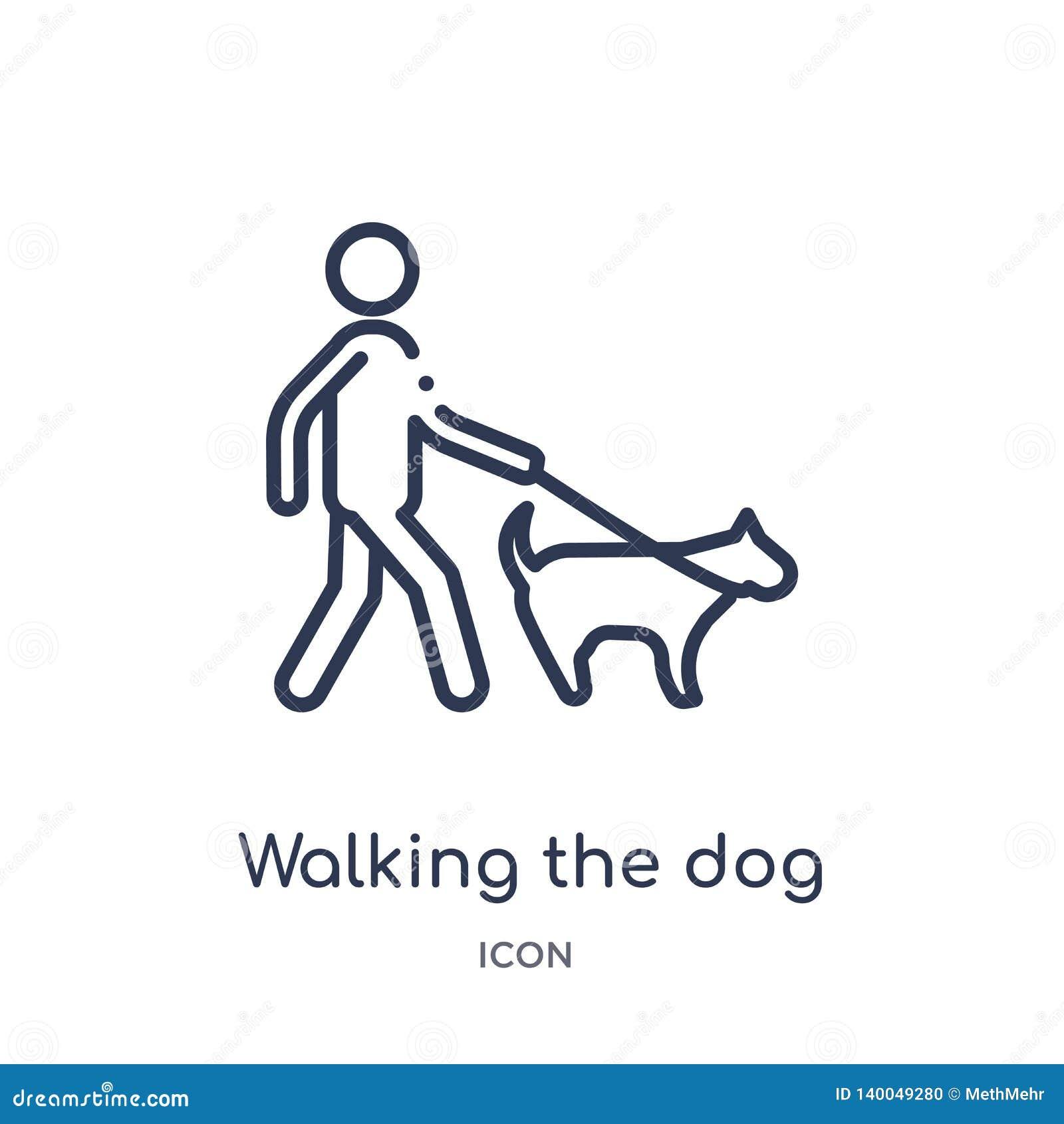 Linear andando o ícone do cão da coleção do esboço do comportamento Linha fina que anda o vetor do cão isolado no fundo branco
