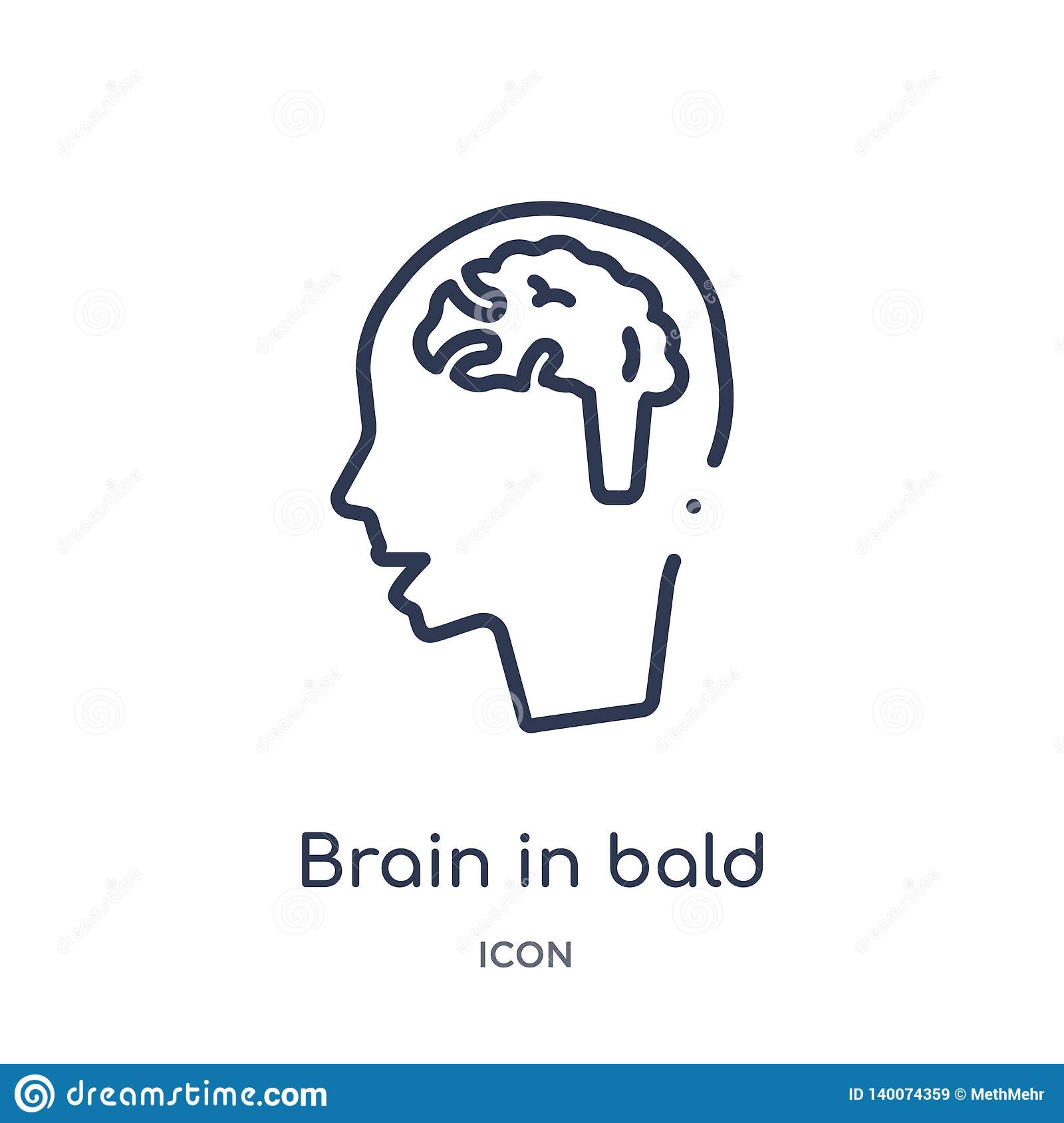 Linear brain in bald male head icon from Medical outline collection. Thin line brain in bald male head icon isolated on white