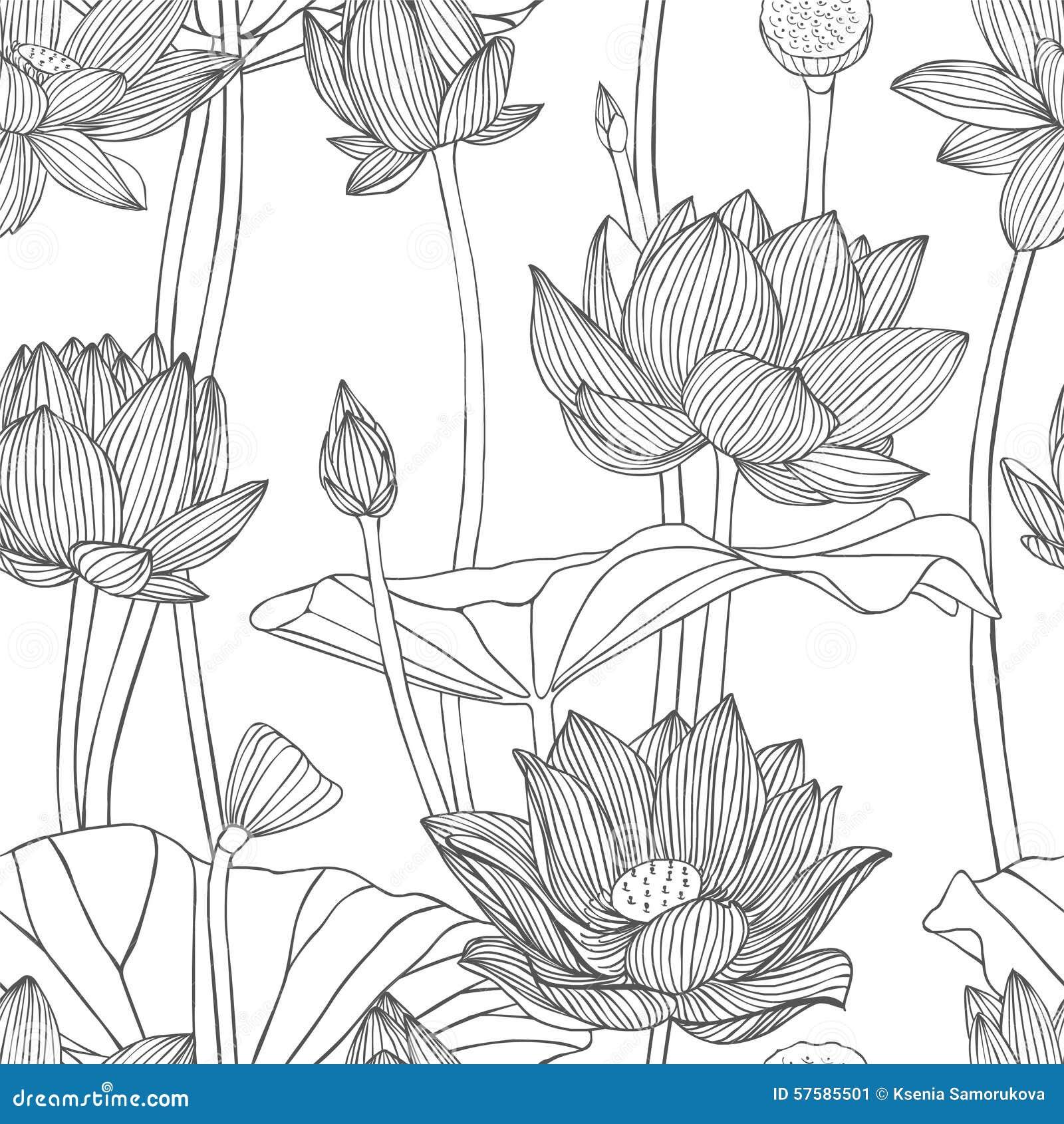 Linear seamless pattern lotus flower stock vector illustration linear seamless pattern lotus flower izmirmasajfo