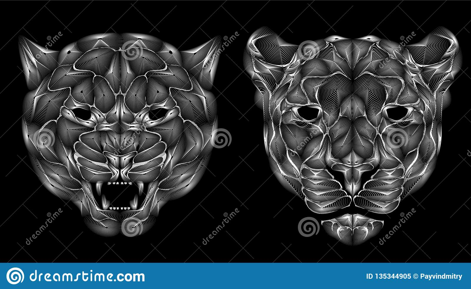 Lineart Illustration Jaguar Head Black And White Color Stock