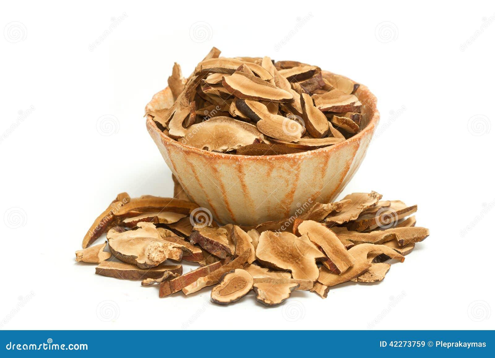 Ling Zhi Mushroom seco, cogumelo de Reishi