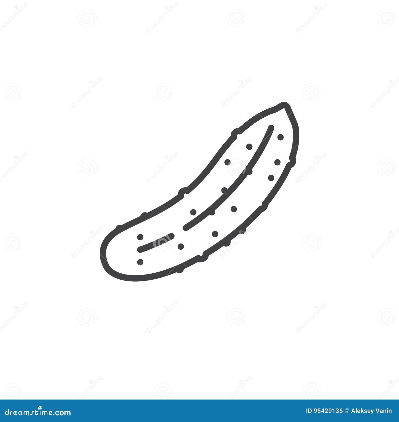 Linha ícone do pepino, sinal do vetor do esboço, pictograma linear isolado no branco