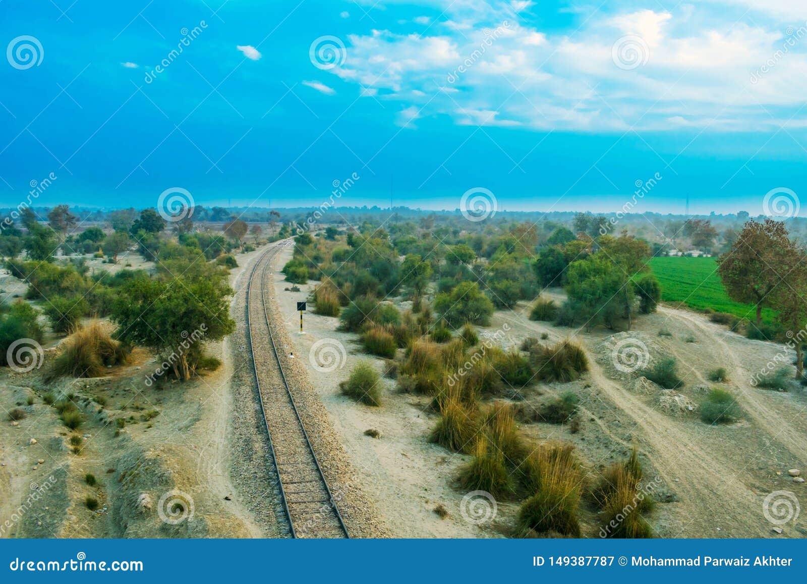 Linha de estrada de ferro velha em uma floresta com c?u nebuloso