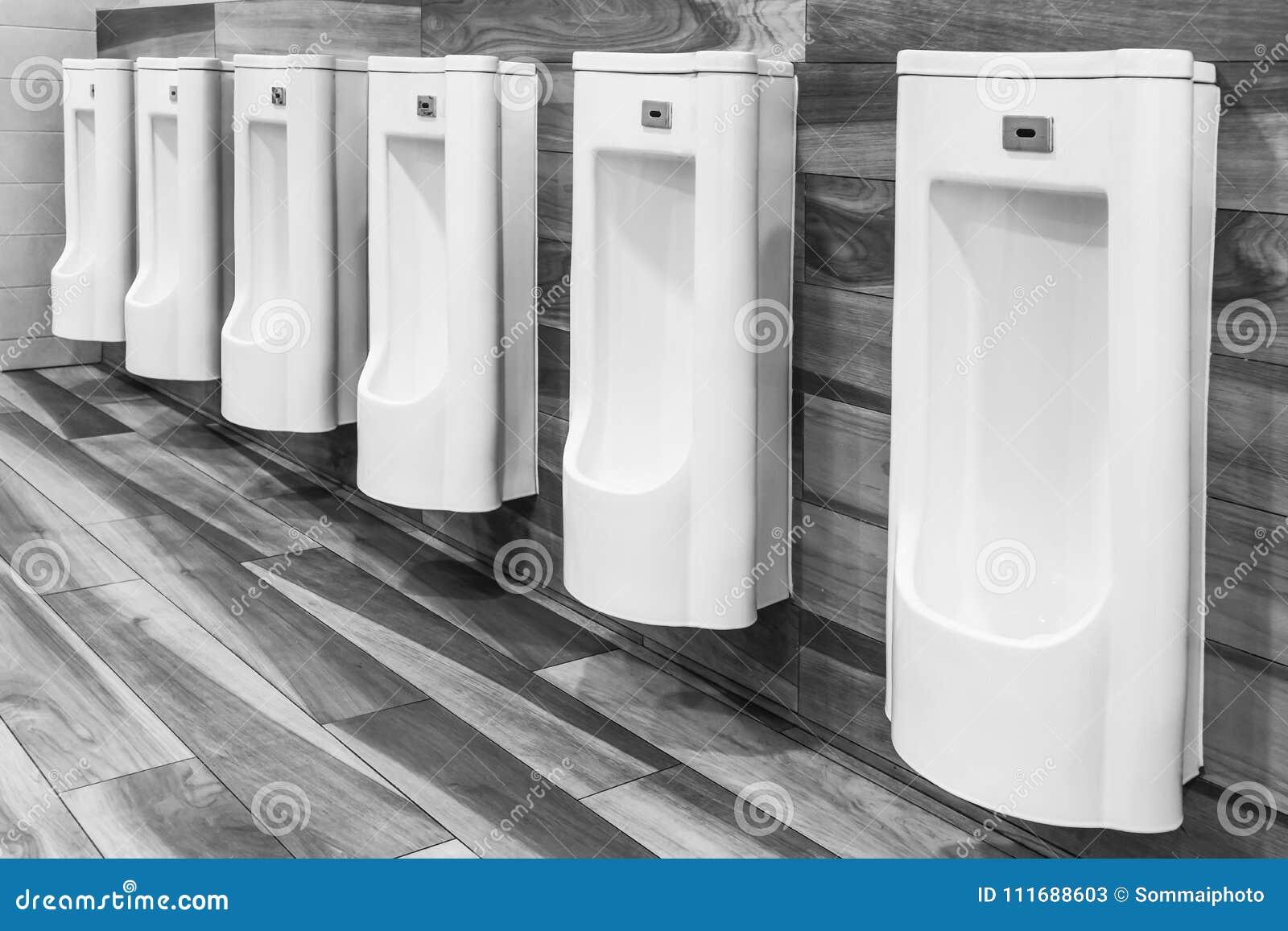 Linha dos mictórios brancos da porcelana em toaletes públicos limpos, claros