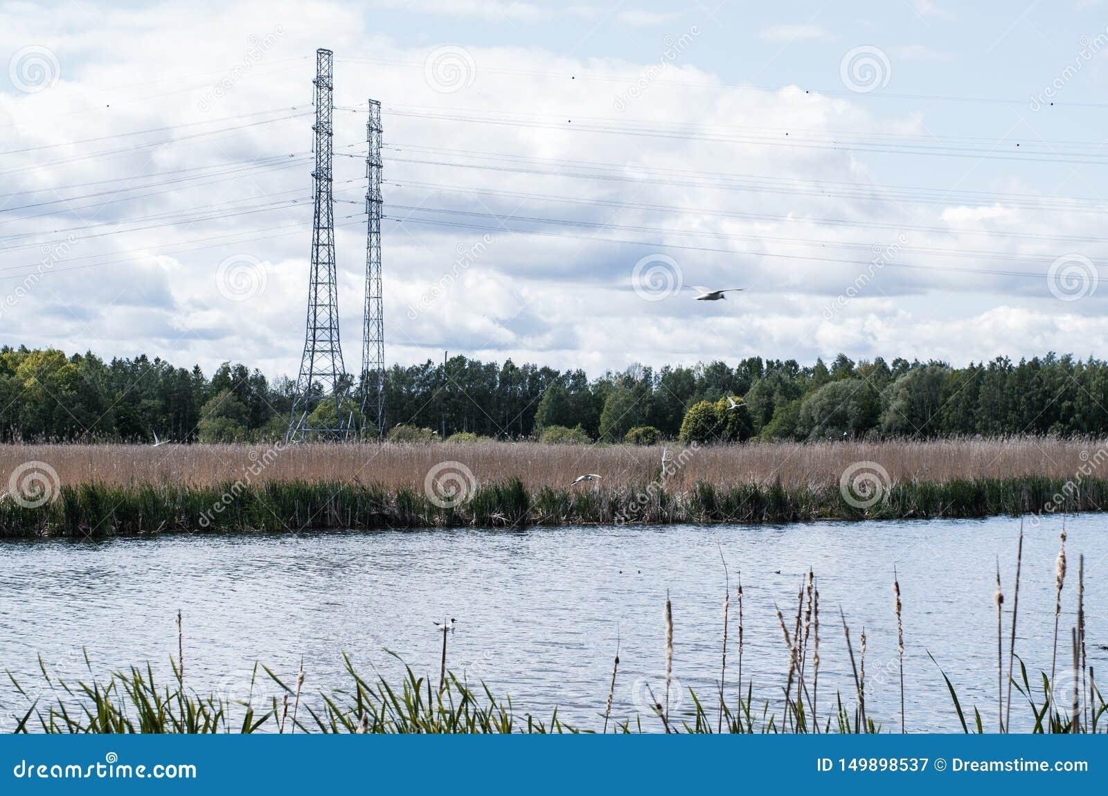 Linha elétrica perto do lago