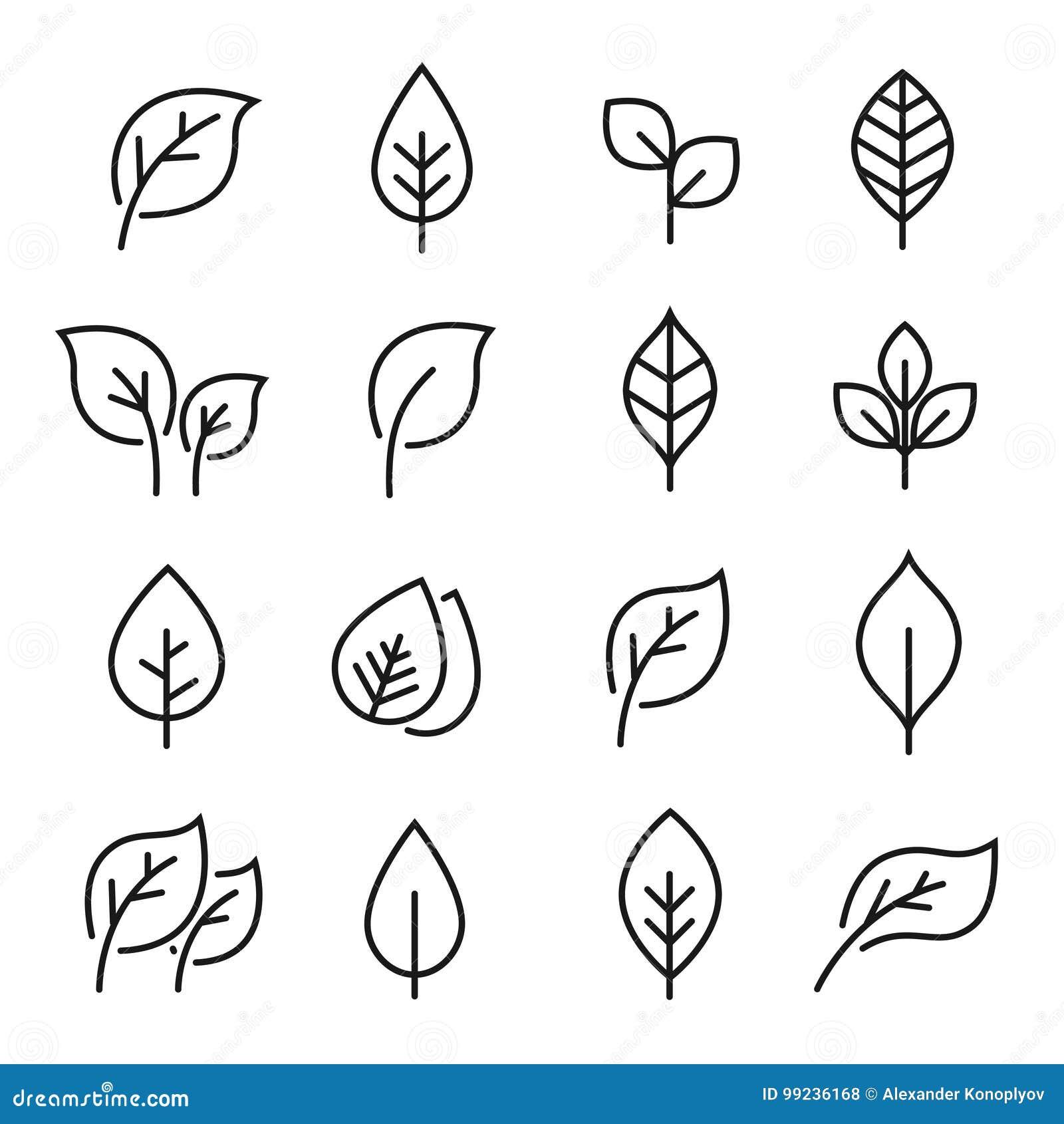 Linha grupo da folha do ícone