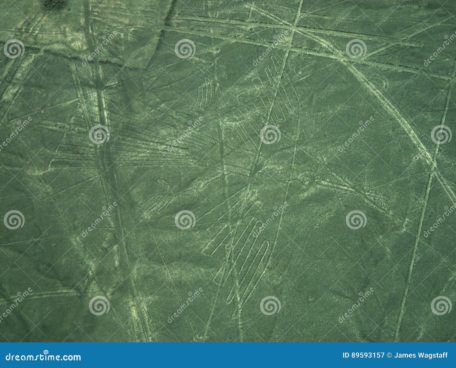 Linhas de Nazca: O condor