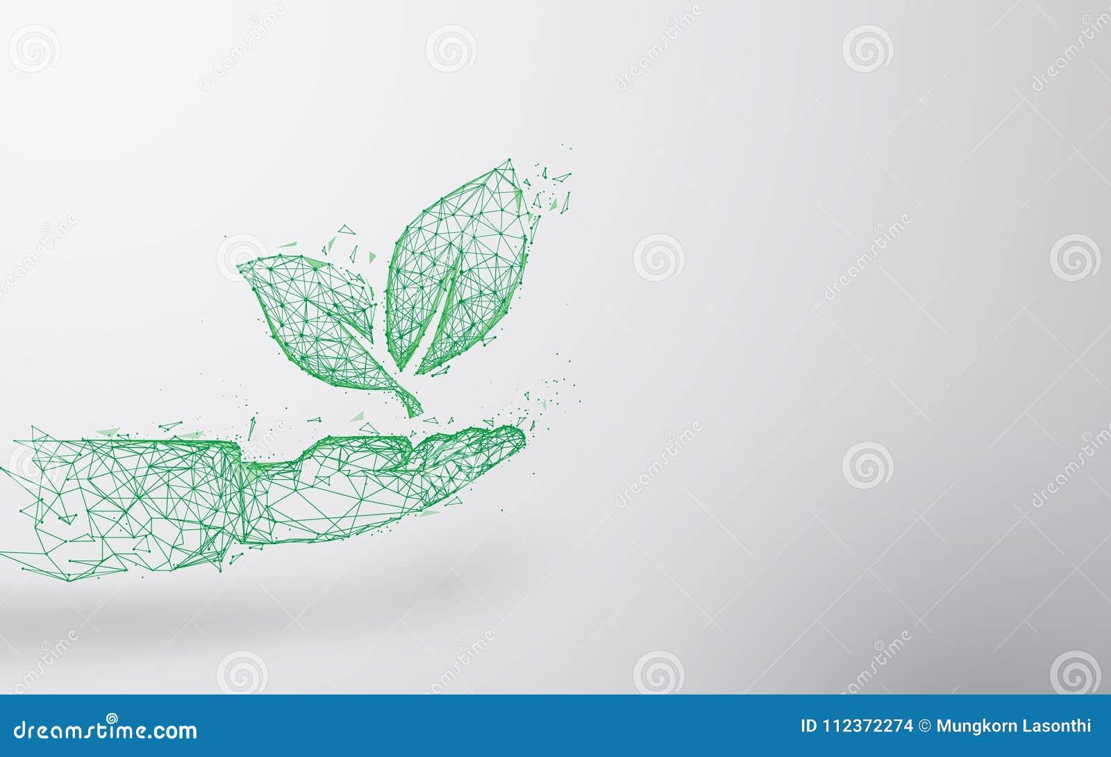 Linhas do formulário da planta disponível e triângulos abstratos, fundo de conexão da rede do ponto Conceito da ecologia