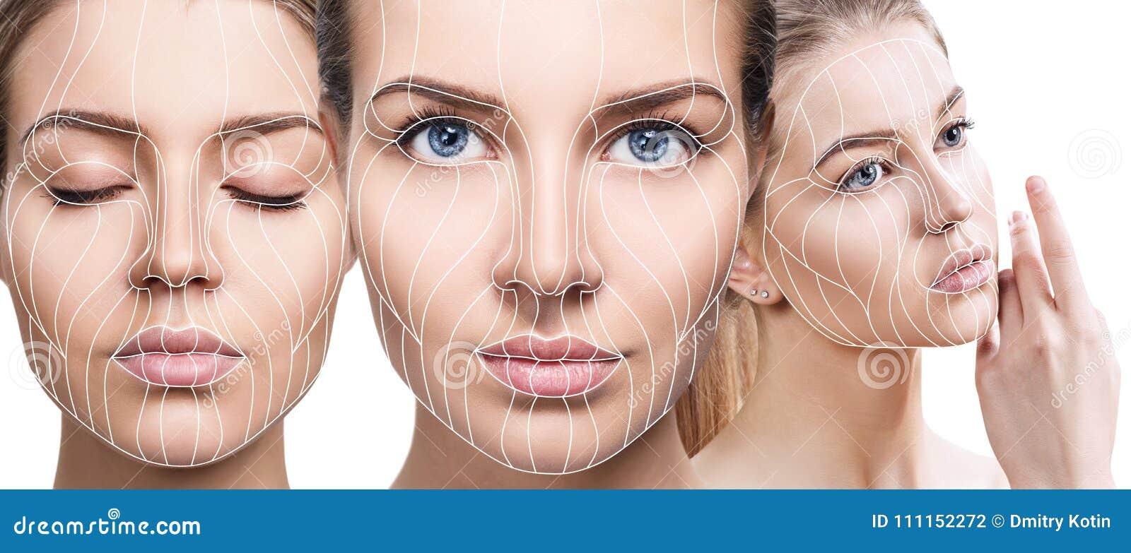 Linhas gráficas que mostram o efeito de levantamento facial na pele