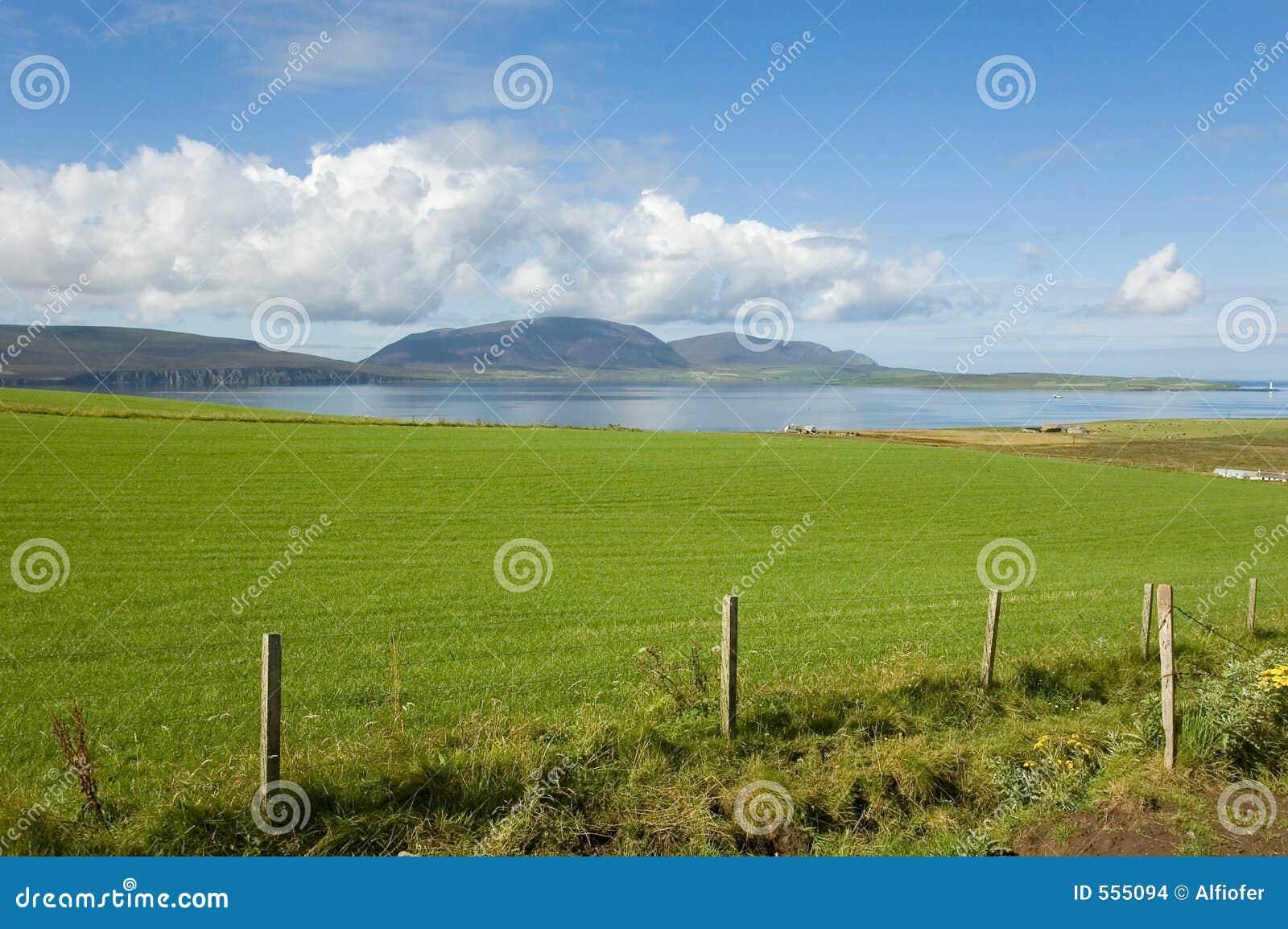 Linię brzegową zielone pola