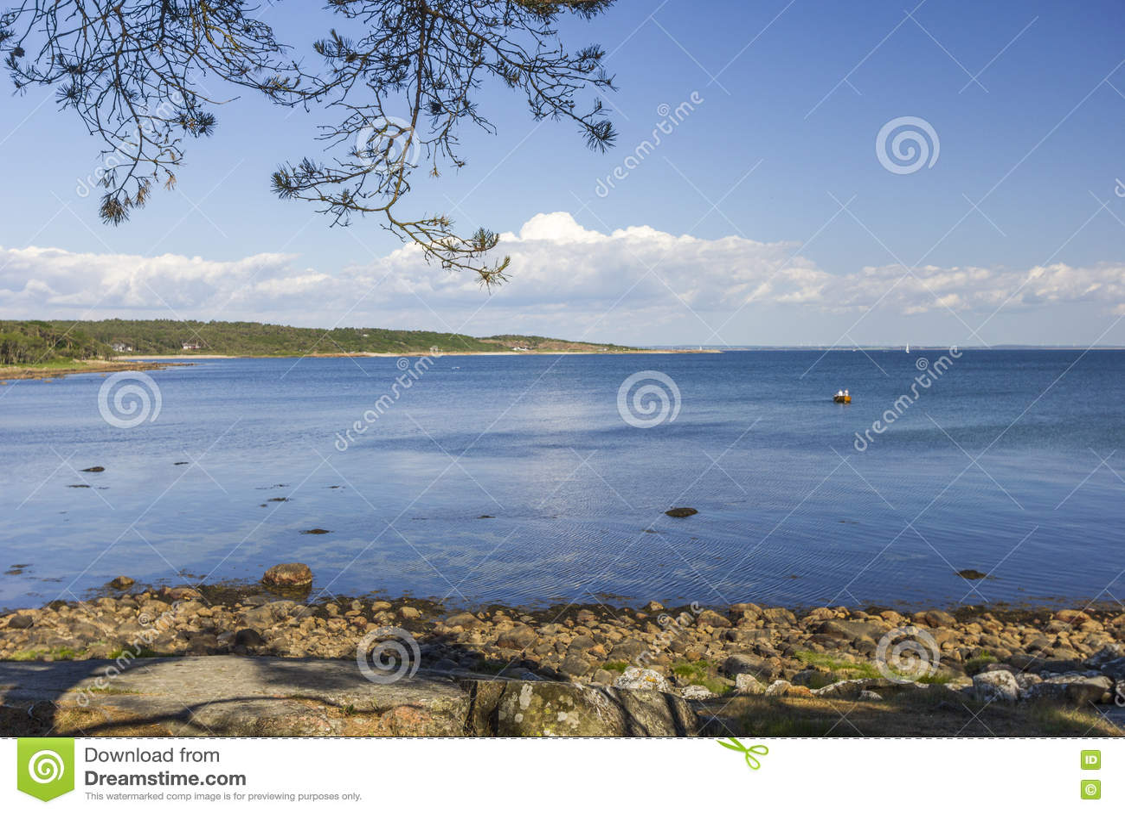 Linia brzegowa blisko Halmstad w Szwecja