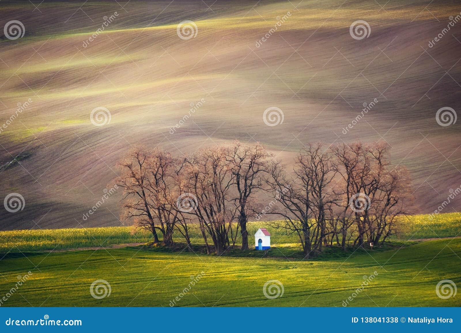 Linie i fala z drzewami i kaplicą w wiośnie, Południowy Moravia, republika czech