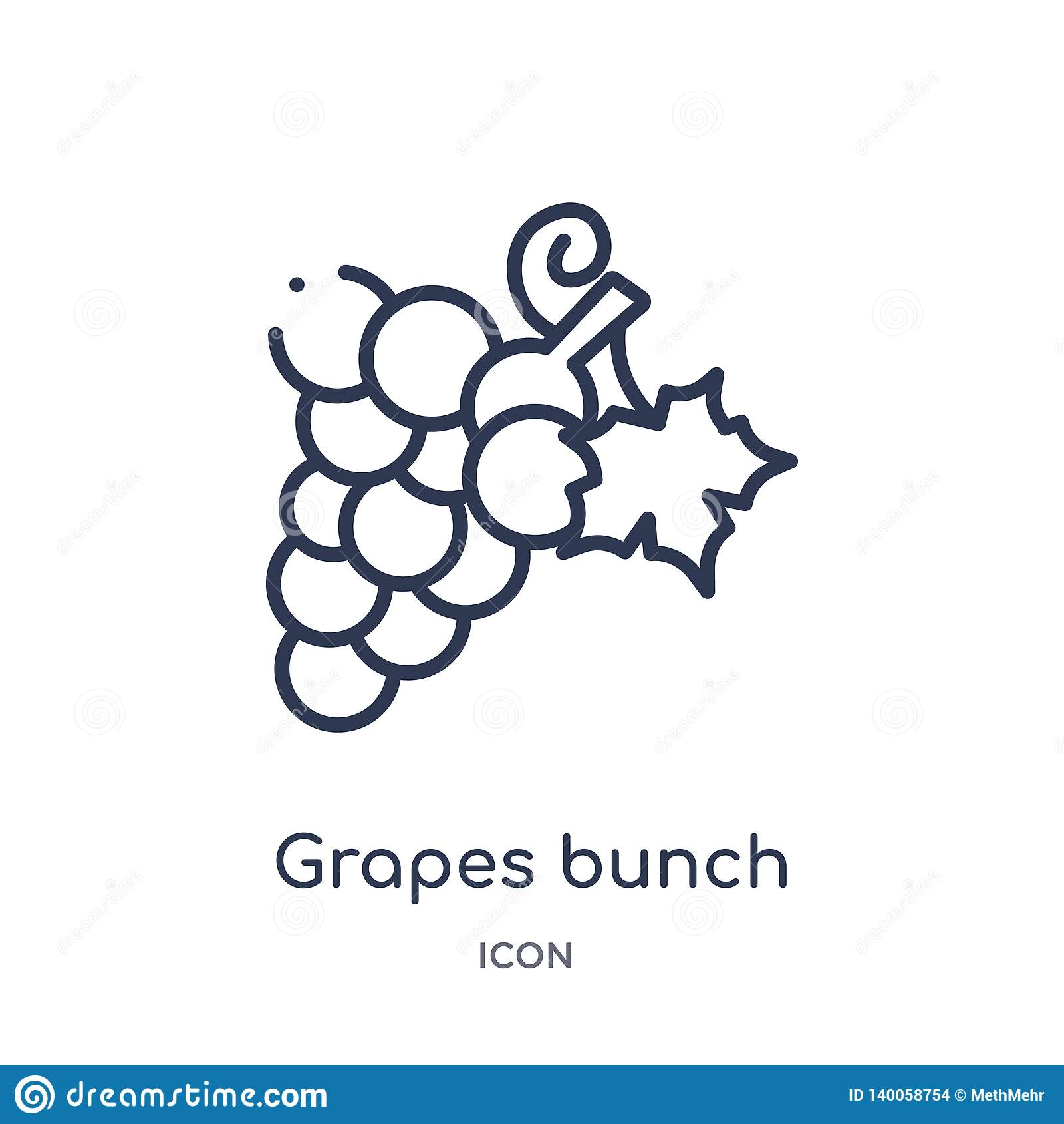 Liniowa winogrono wiązki ikona od Grecja konturu kolekcji Cienieje kreskową winogrono wiązki ikonę odizolowywającą na białym tle