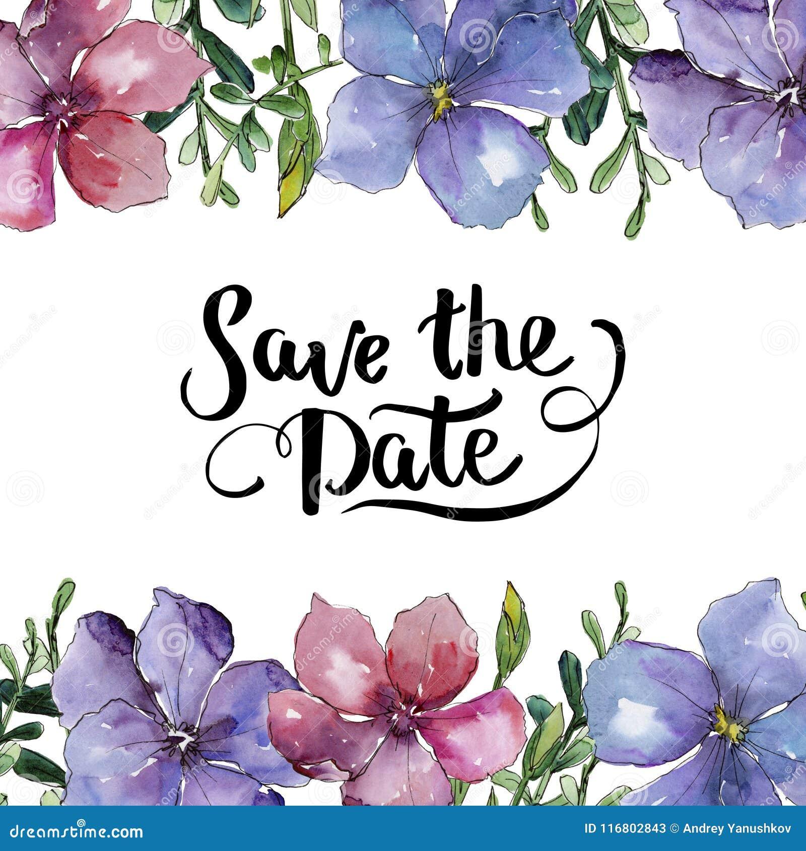 Lino variopinto Fiore botanico floreale Quadrato dell ornamento del confine della pagina
