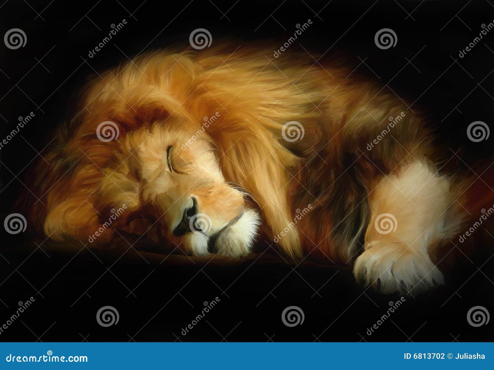 Lion de sommeil
