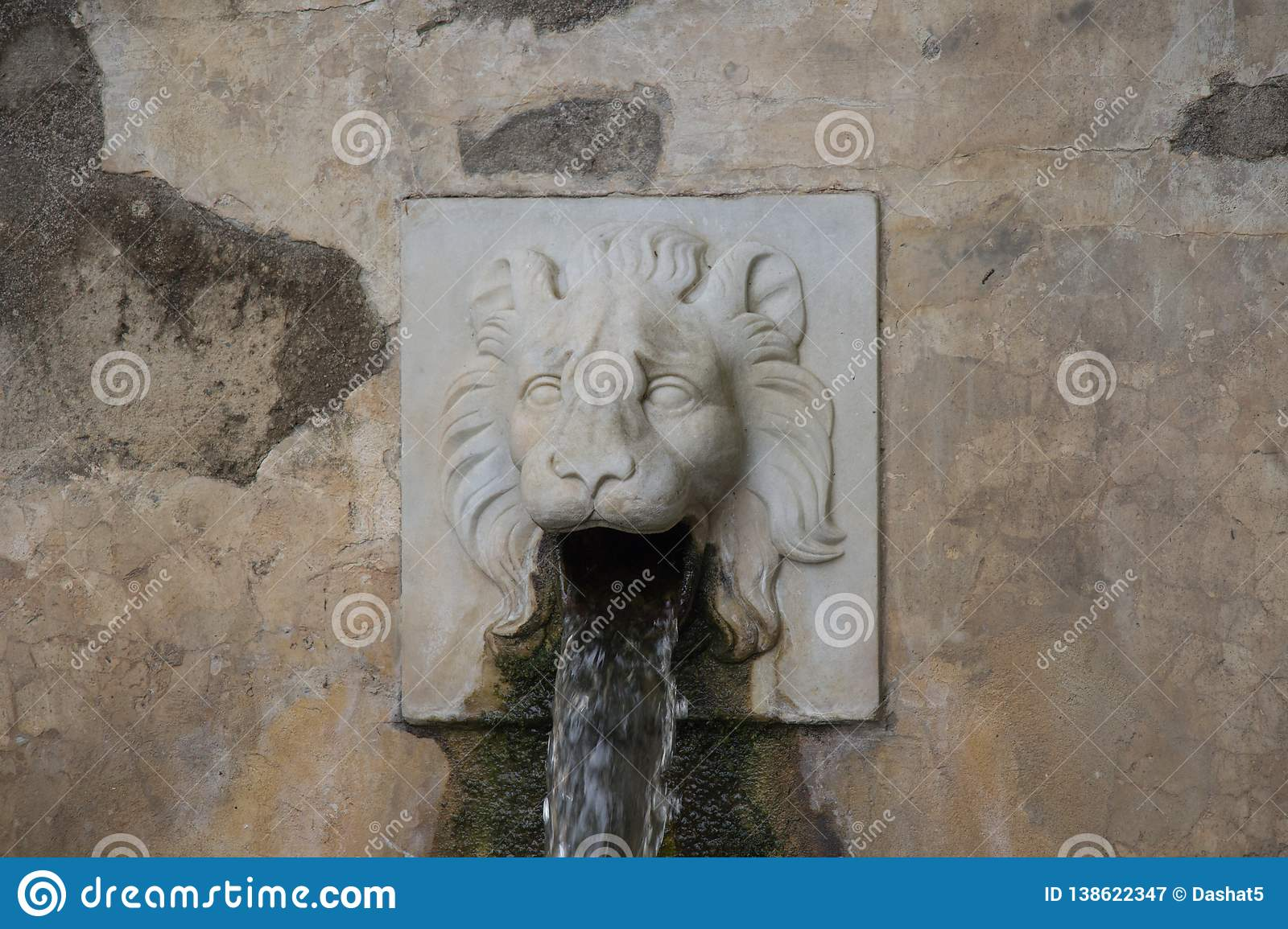 Lions Fountain Florence.Lion Face Water Fountain Close Up Of The Dragon Channel In