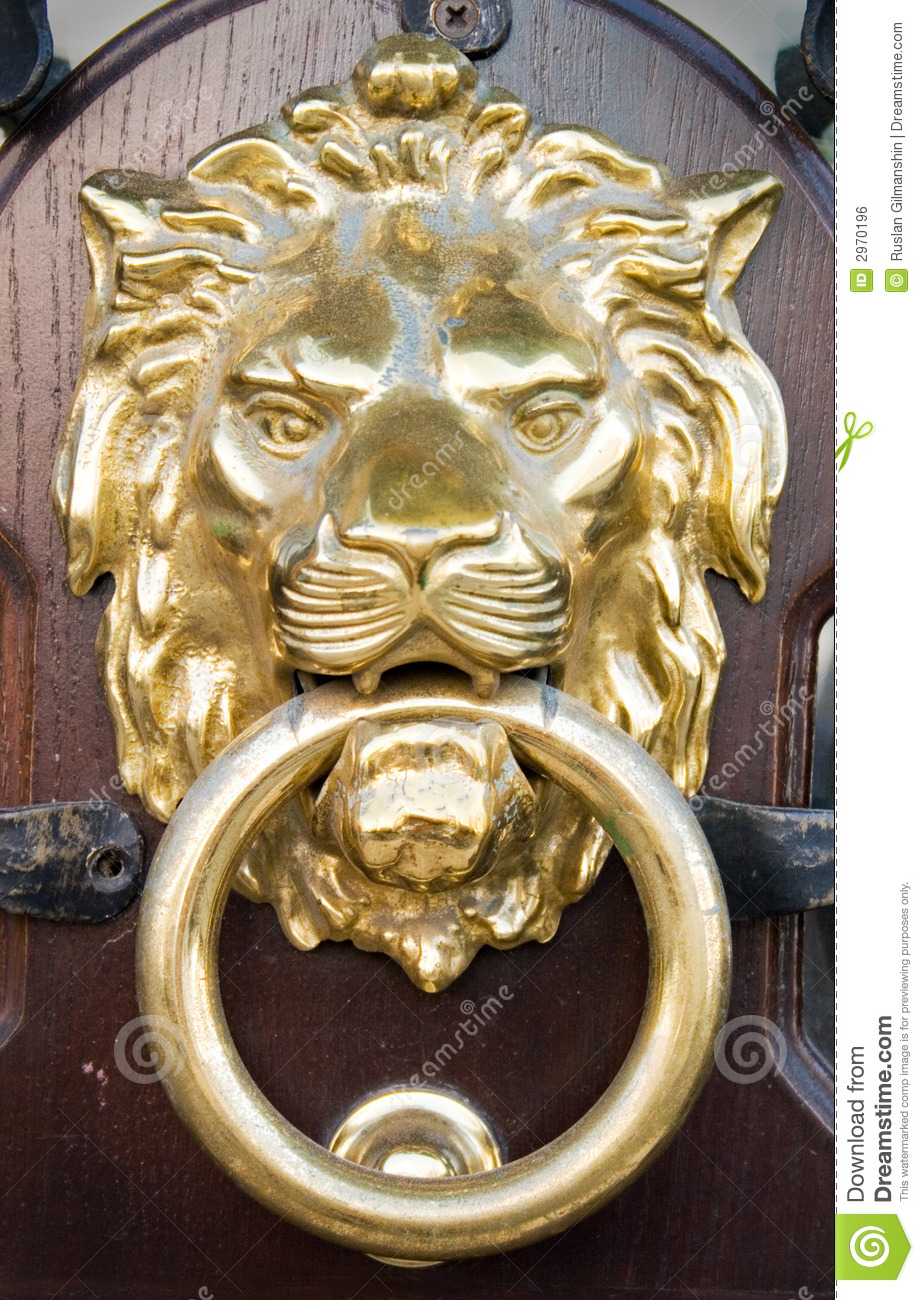 Lion Head Royalty Free Stock Image Image 2970196
