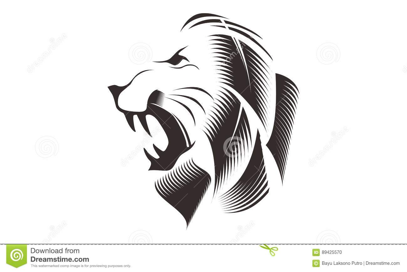 Line Drawing Lion Head : Lion head line art drawing illustration stock