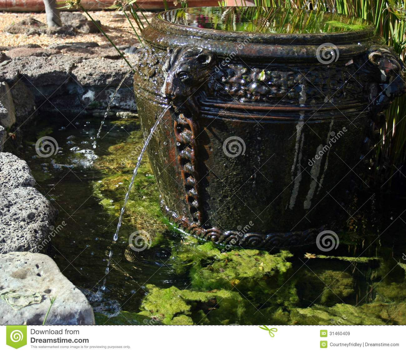 lion head spitting fountain into pond stock image image 31460409