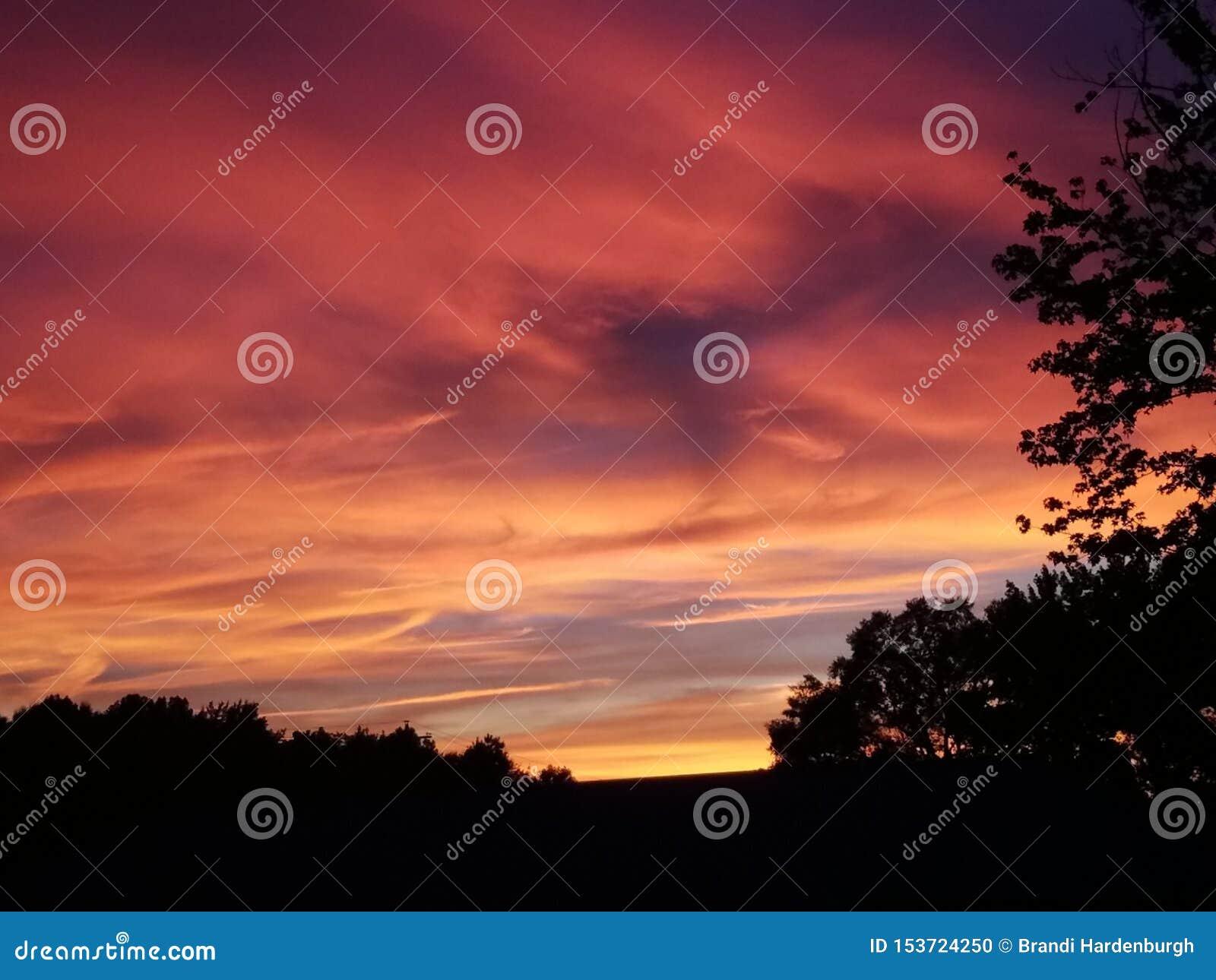 Lion King Sunset Stock Photo Image Of Colors Sunset
