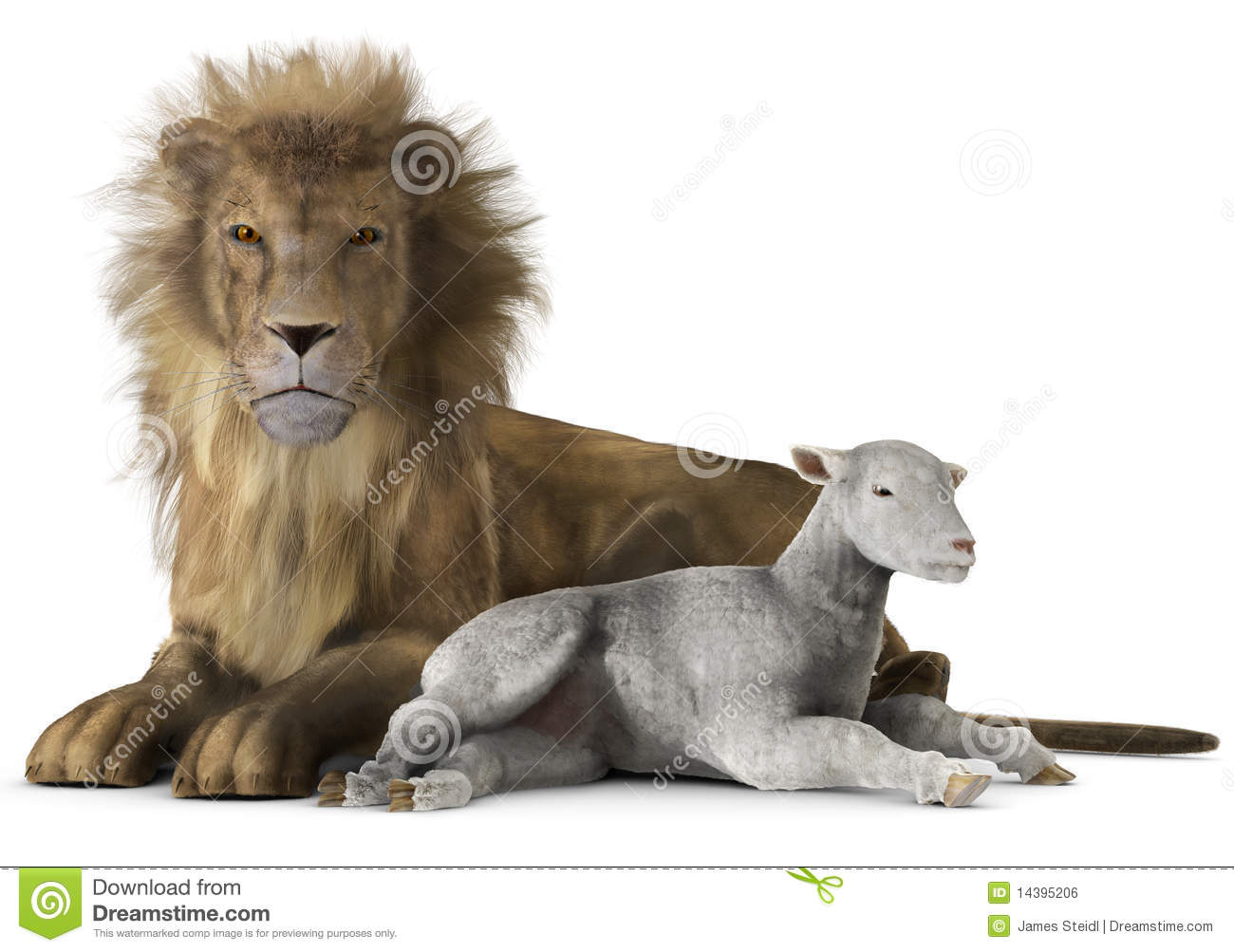 Lion and lamb stock illustration. Illustration of resting - 14395206 for Lion And Lamb Painting  45ifm