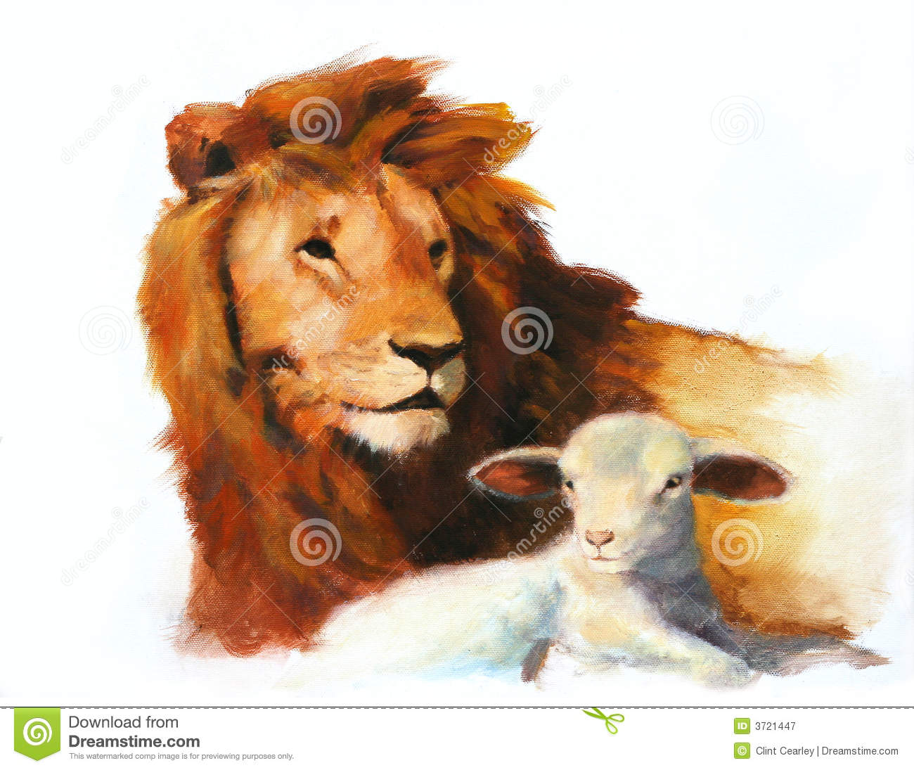Lion  for Lion And Lamb Painting  111ane
