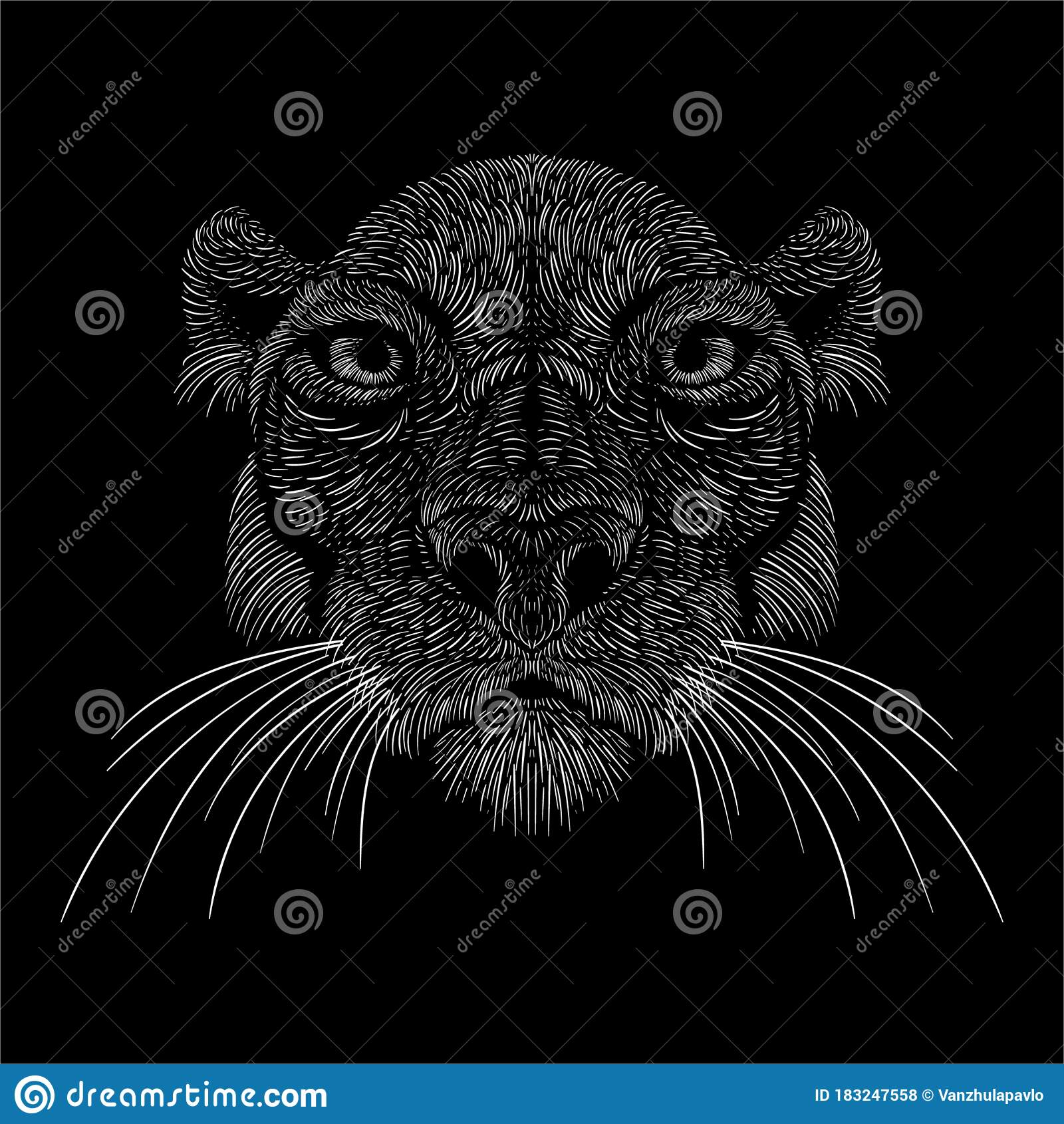 Lion Lioness Animal Vector Illustration Art Print T Shirt Apparel Or Tattoo Design Or Outwear Hunting Style Cat Background This Stock Vector Illustration Of Natural Halloween 183247558